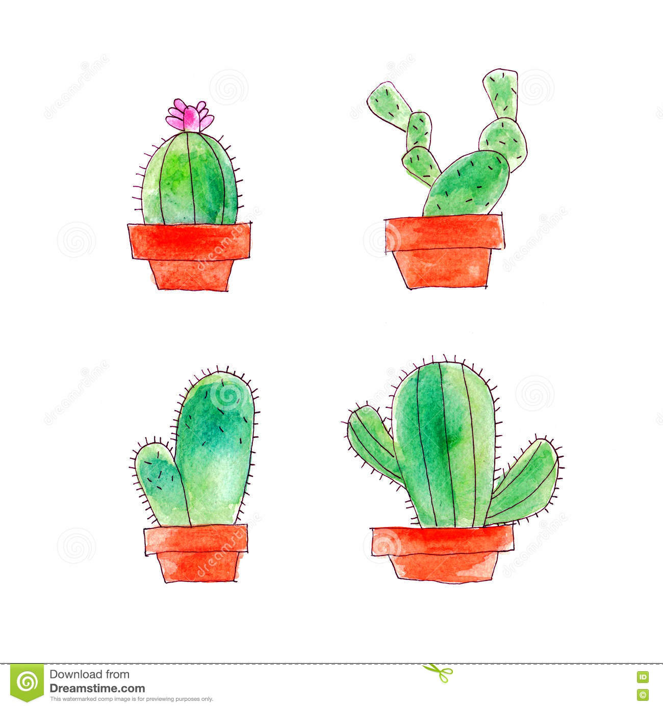 Cactus Watercolor Drawing Set On White Background Stock ...