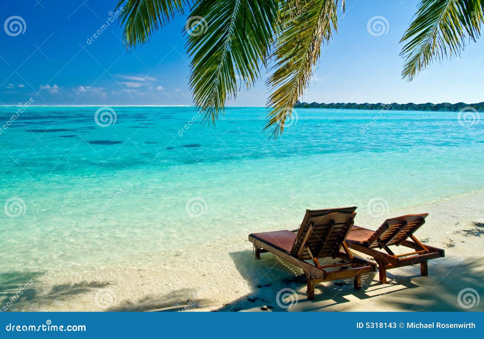 Cadeiras Da Lona Na Praia Tropical Fotos de Stock Imagem: 5318143 #0A83BF 1300x928