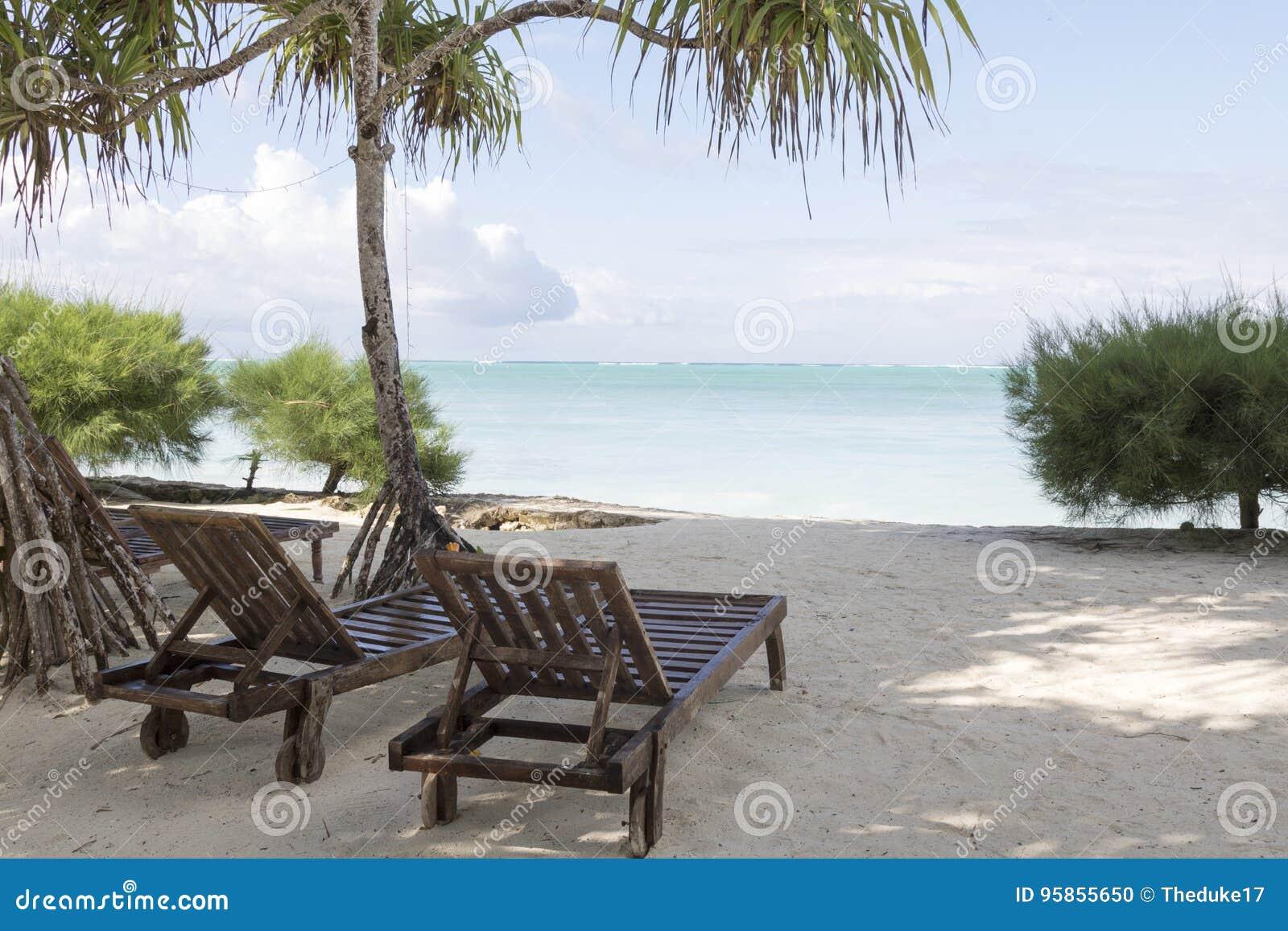 Cadeiras de sala de estar de madeira
