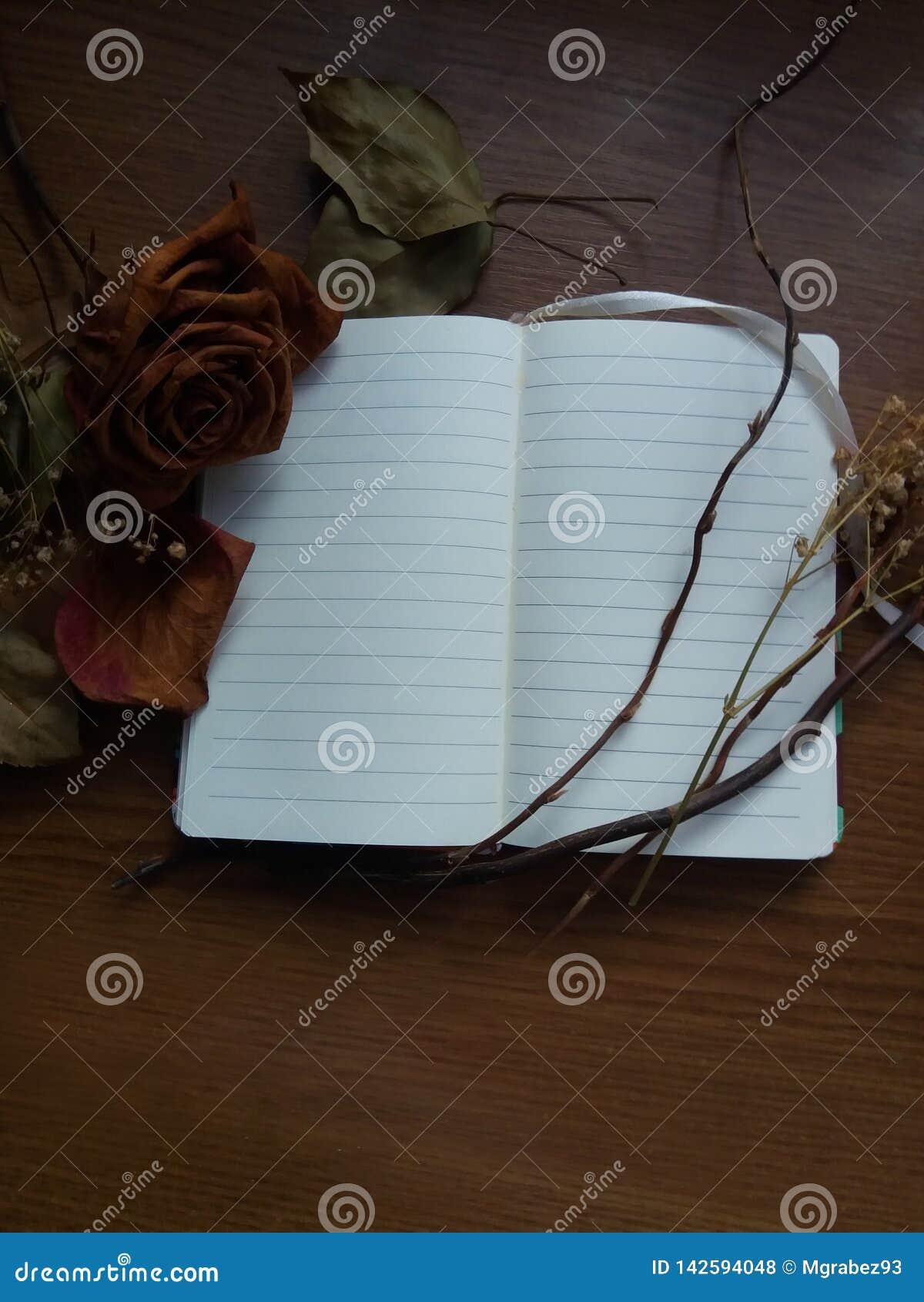 Caderno aberto e flores secadas