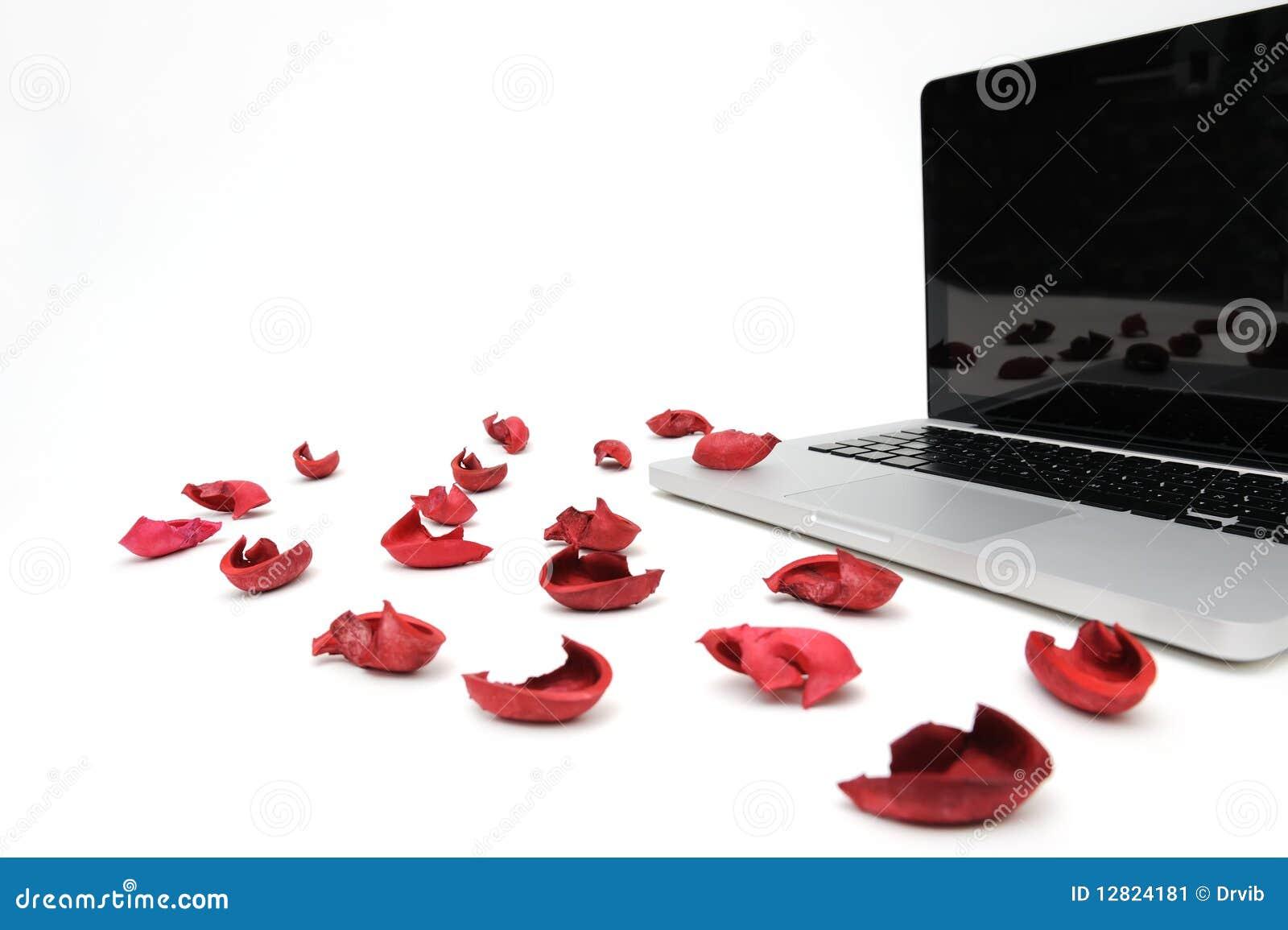 Caderno com a pétala vermelha da flor exótica