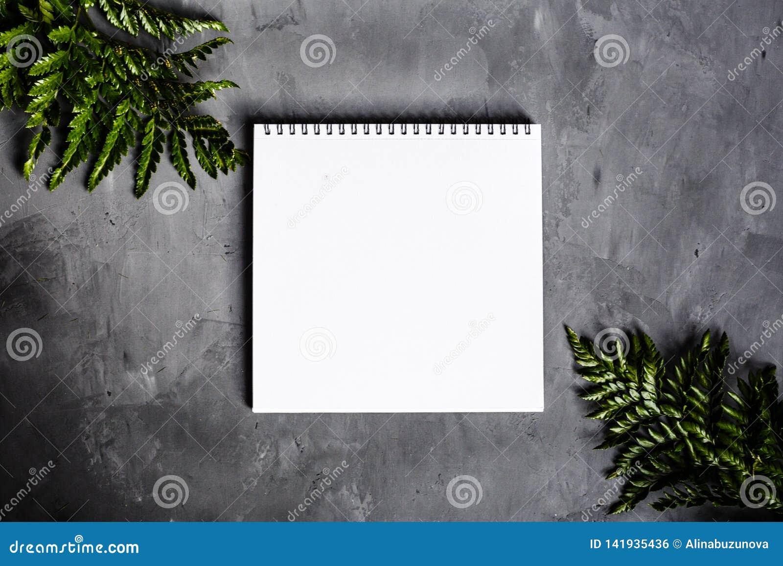 Caderno e folhas verdes que encontram-se no fundo cinzento Configuração lisa, vista superior Lugar para o texto