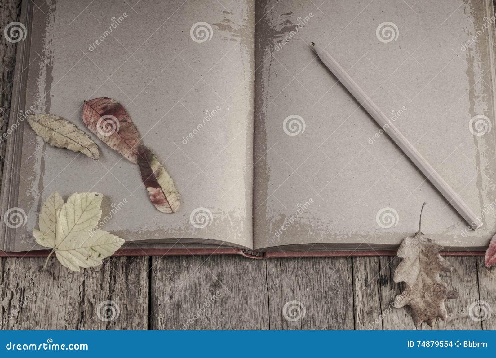 Caderno na tabela de madeira decorada com folhas secadas