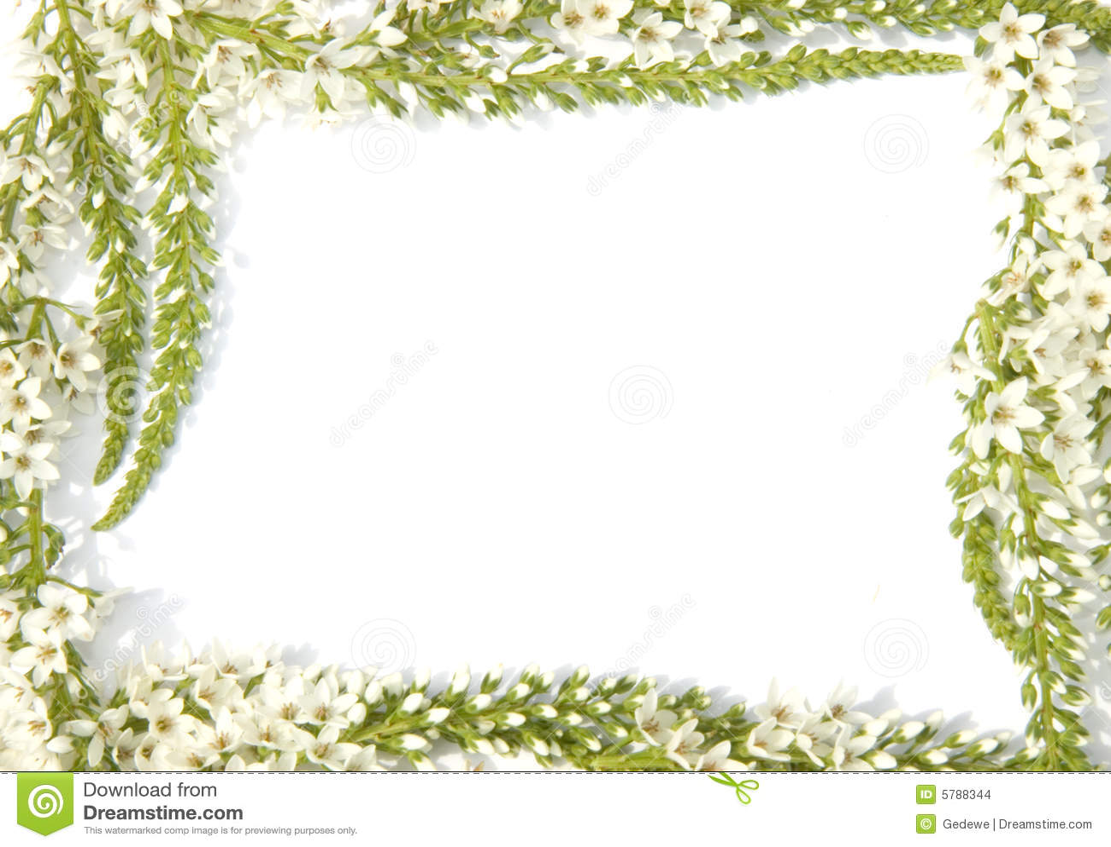 cadre avec des fleurs images stock image 5788344. Black Bedroom Furniture Sets. Home Design Ideas