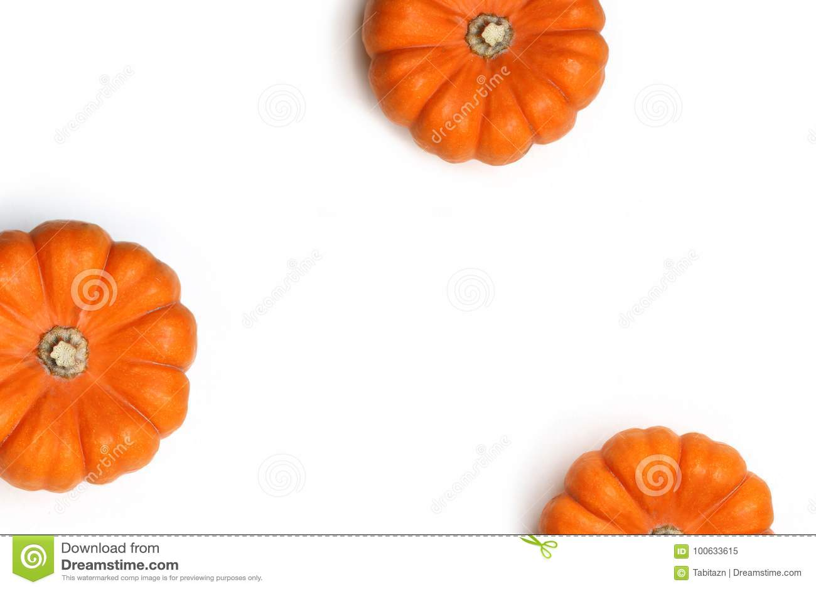 Cadre d automne fait de potirons oranges d isolement sur le fond blanc Concept de chute, de Halloween et de thanksgiving dénommé