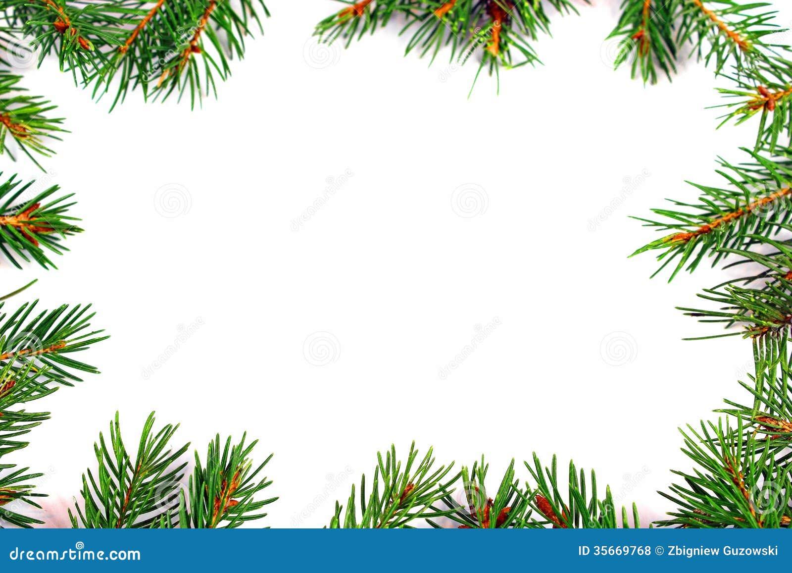 Cadre de no l avec la branche d 39 arbre naturelle de sapin for Branche de sapin deco noel