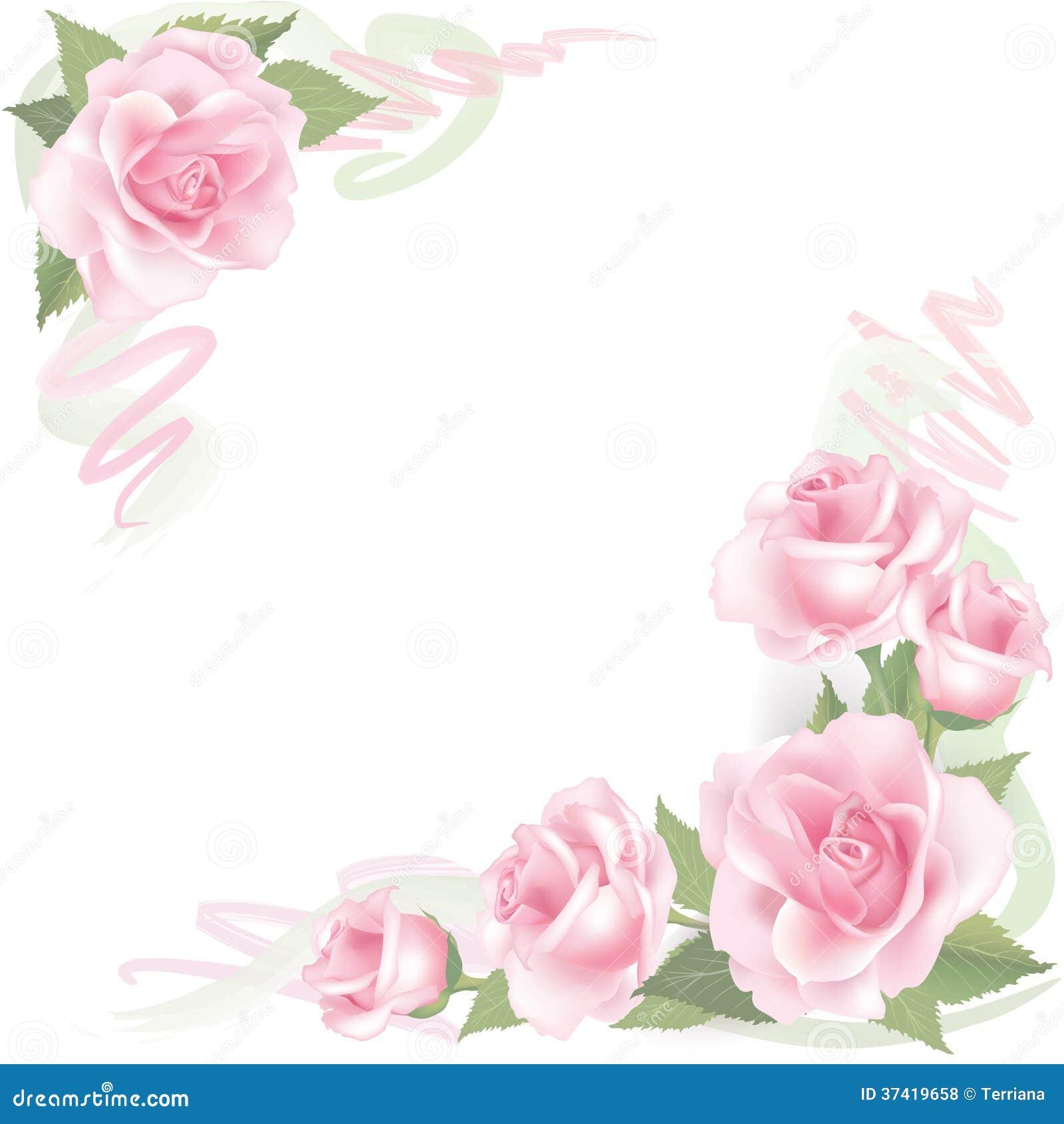 Cadre De Rose De Fleur Sur Le Fond Blanc D 233 Cor Floral