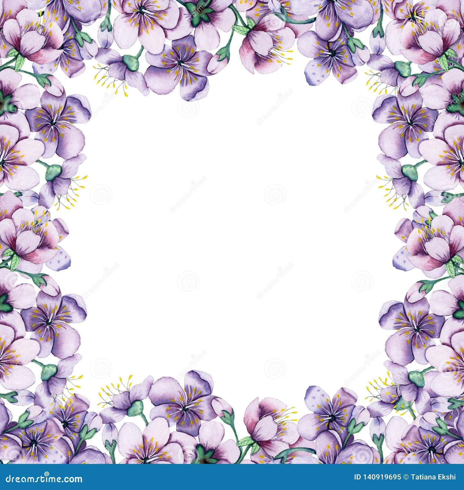 Cadre Floral D Aquarelle Tirée Par La Main Fond Pour Des Cartes Des