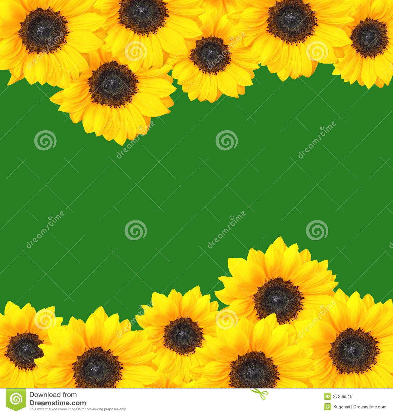 Cadre jaune de tournesols
