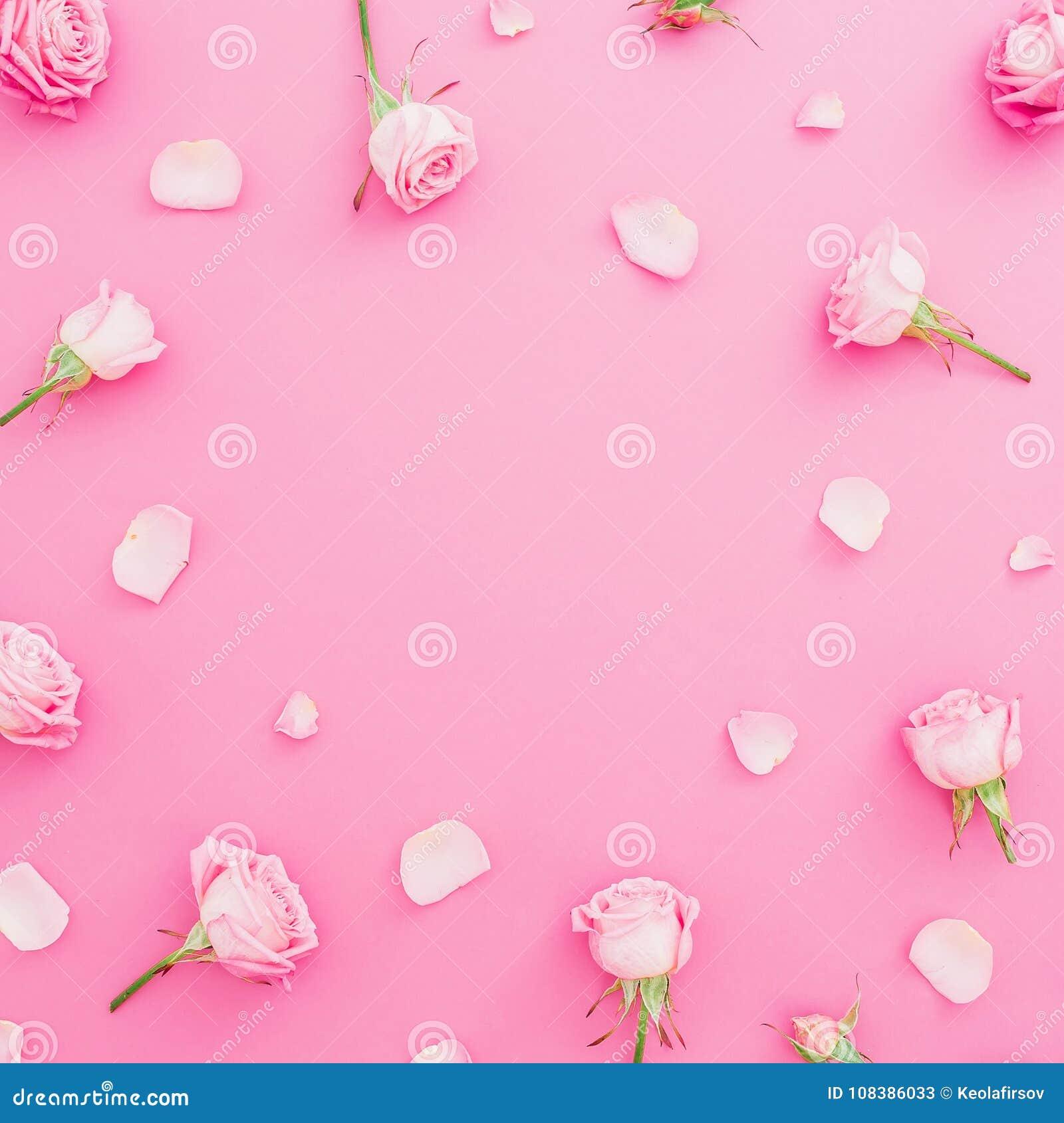 Cadre rond floral avec des fleurs et des pétales de roses sur le fond de rose en pastel Configuration plate, vue supérieure Fond