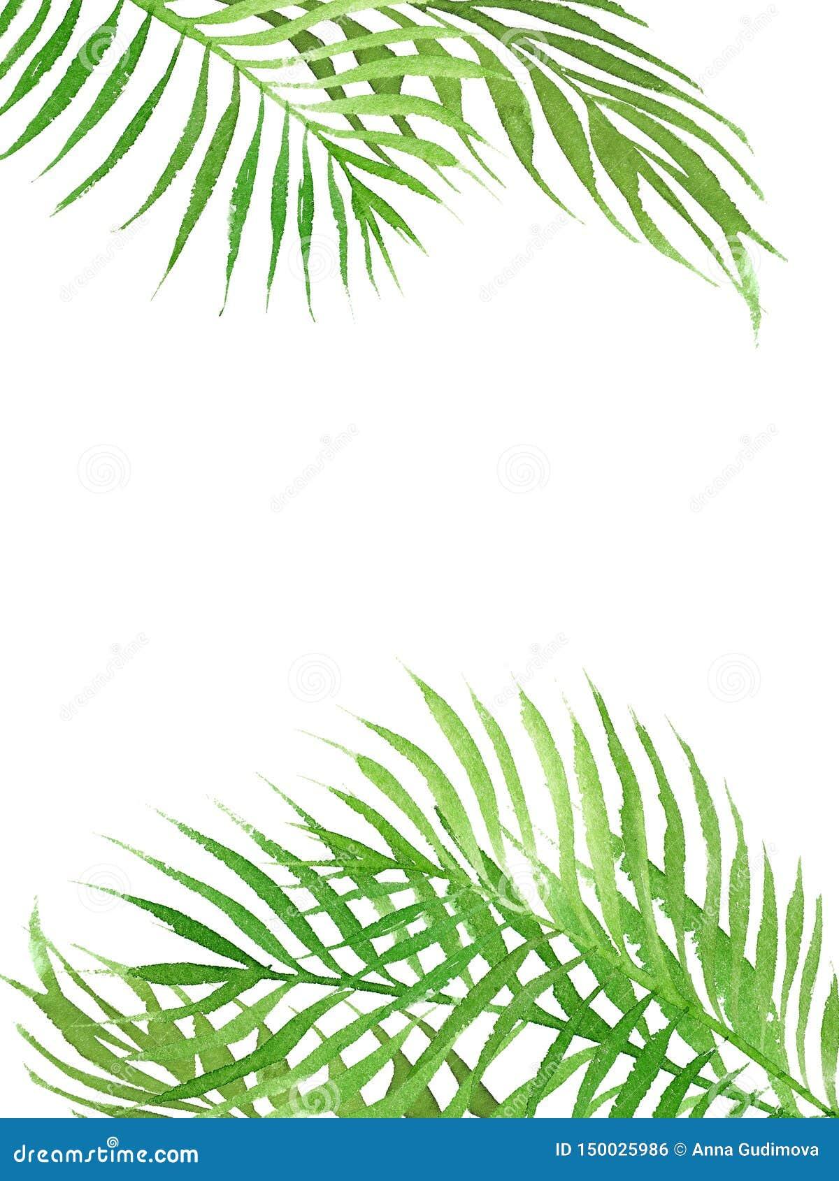 Cadre tropical de frontière d aquarelle avec des feuilles de palmier