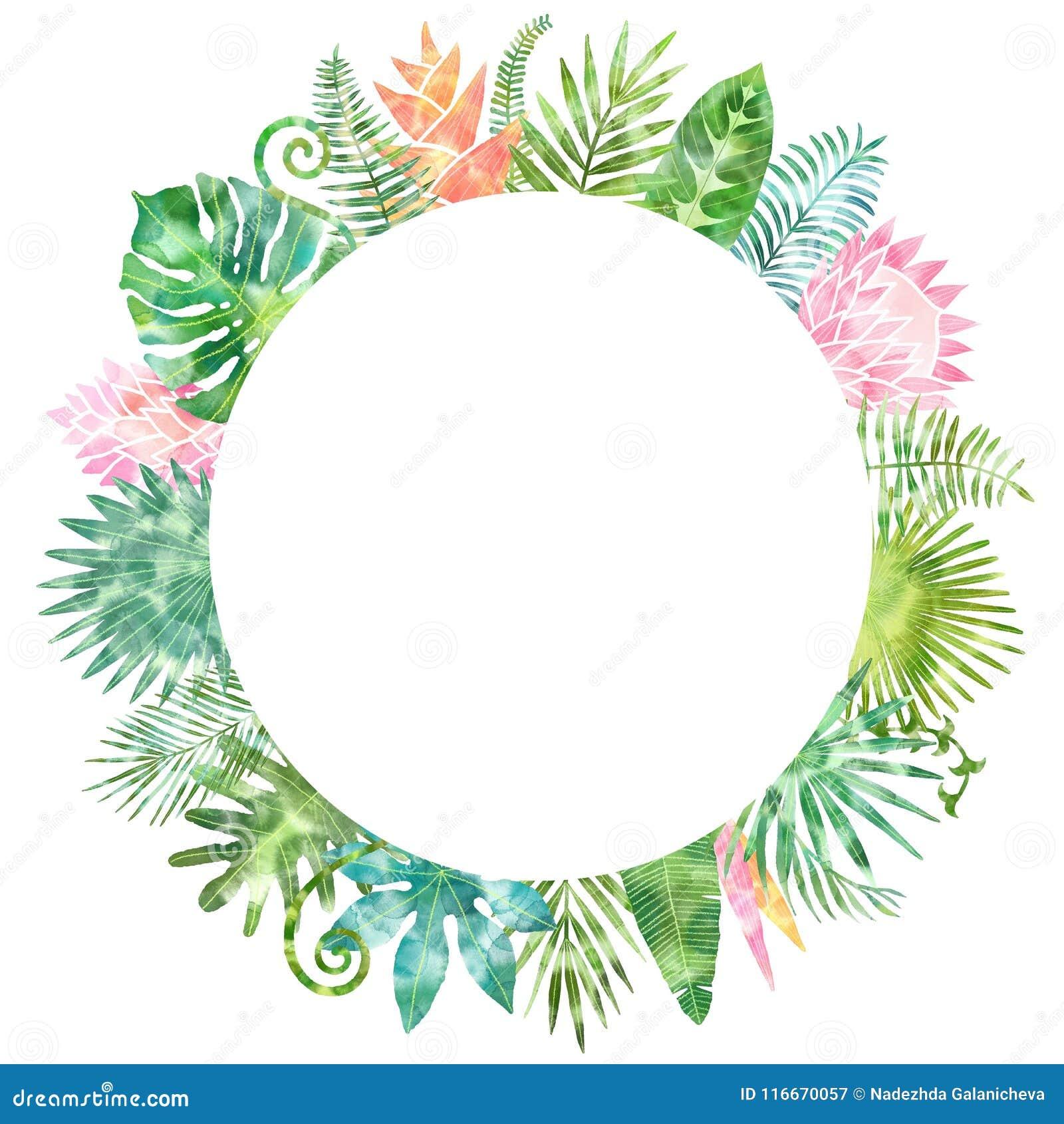 Cadre Vert De Plantes Tropicales D Aquarelle Endroit Pour Votre