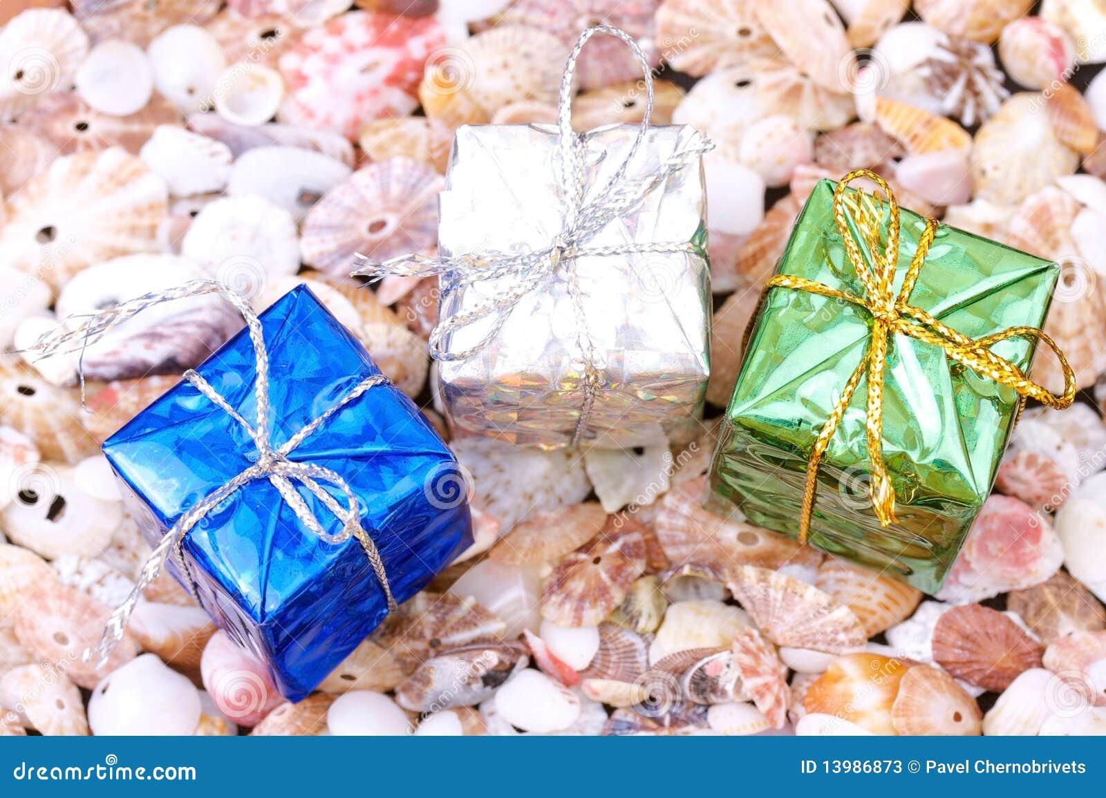Cadres actuels sur le fond de seashell