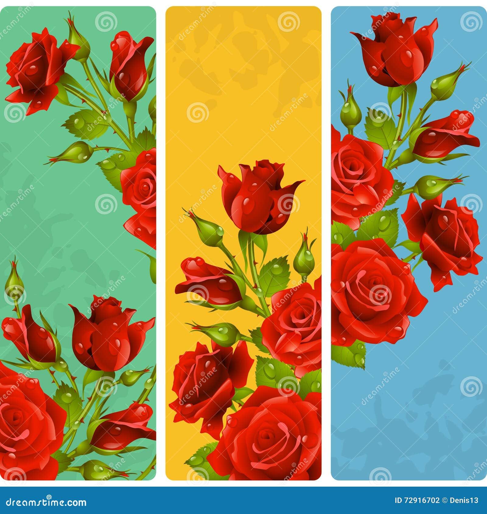 Cadres de Rose rouge de vecteur Ensemble de bannières verticales florales