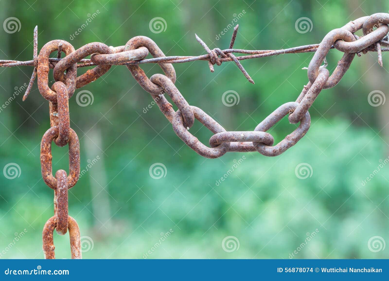 Caduta a catena arrugginita con filo spinato
