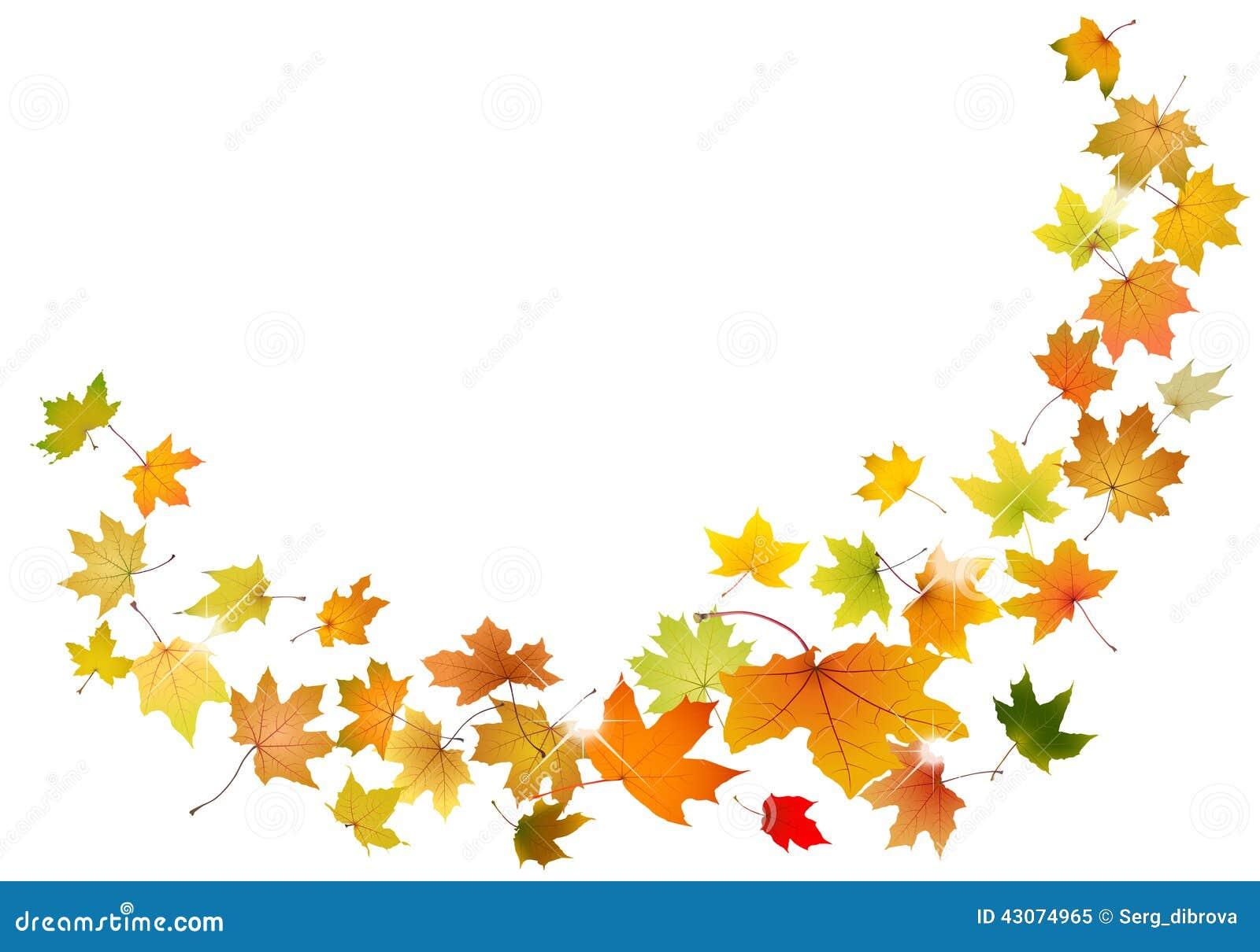 Caduta delle foglie di acero illustrazione vettoriale - Caduta fogli di colore stampabili ...