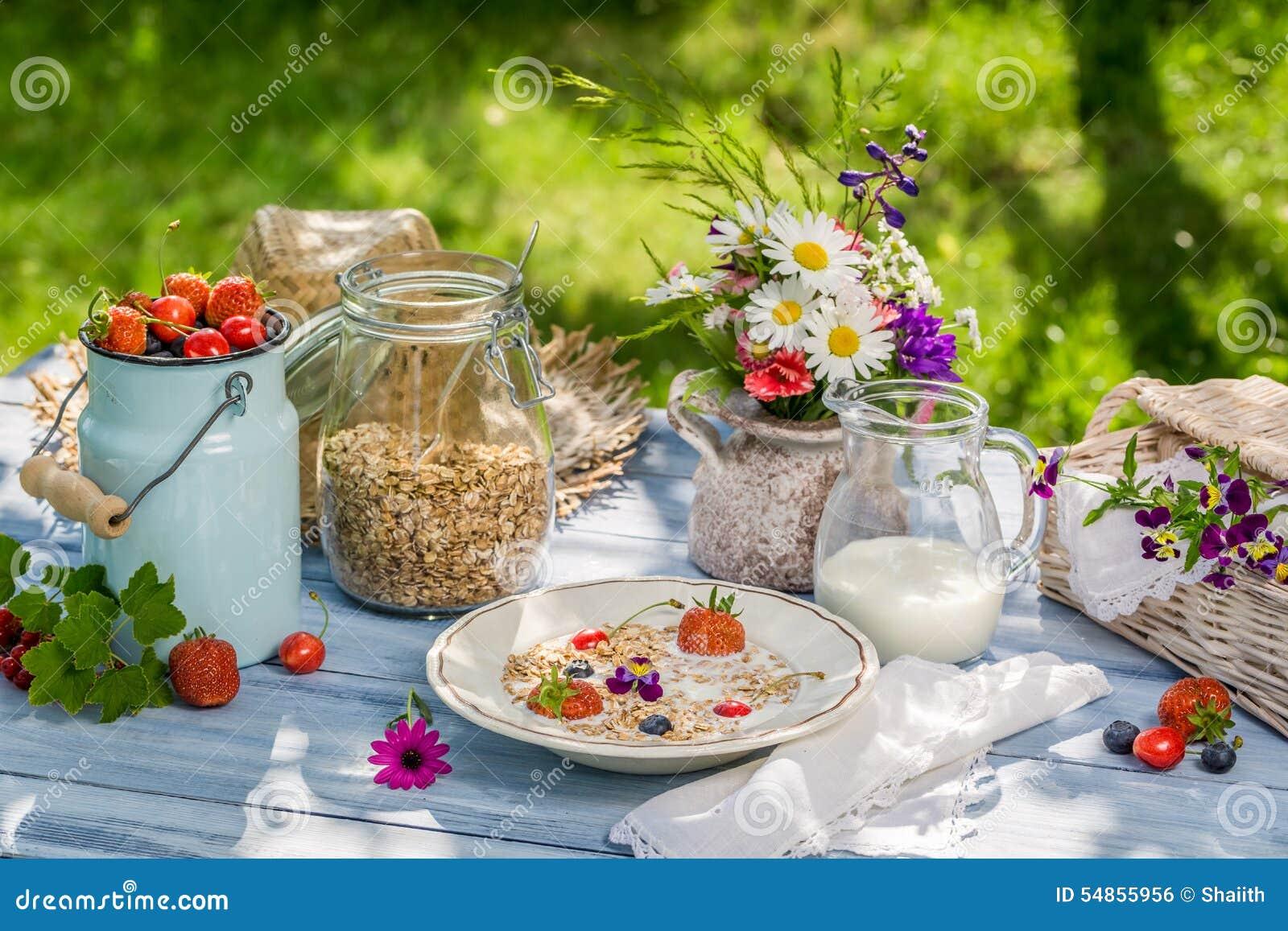 Caf da manh do campo no jardim foto de stock imagem for Au jardin brunch