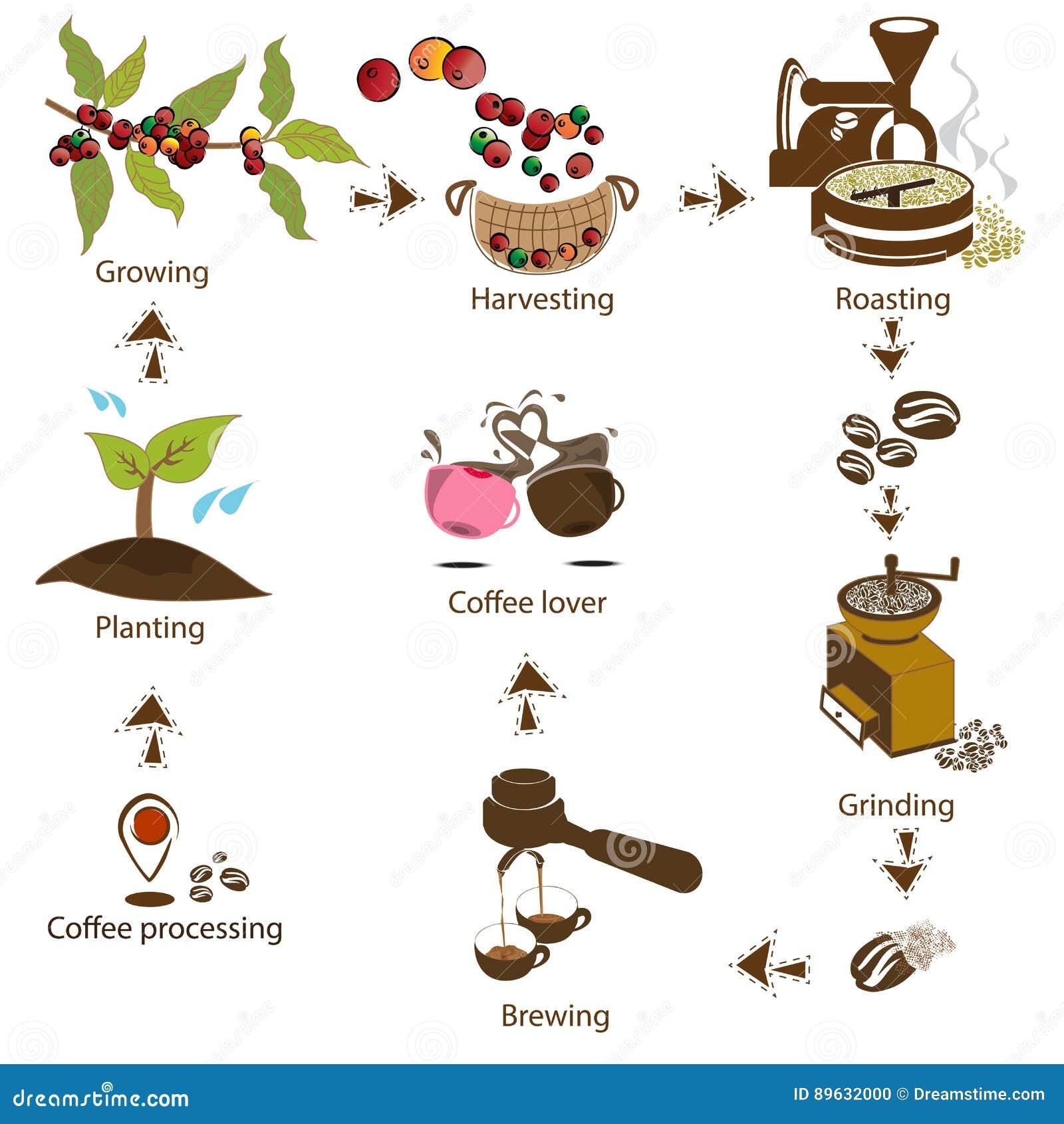 Café traitant point par point du haricot à l amant de café