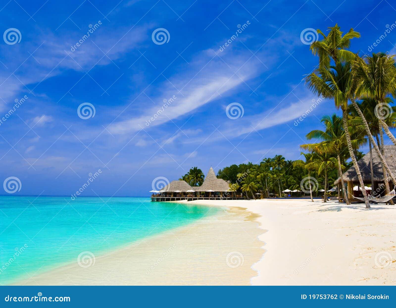 Café y palmas en una playa tropical