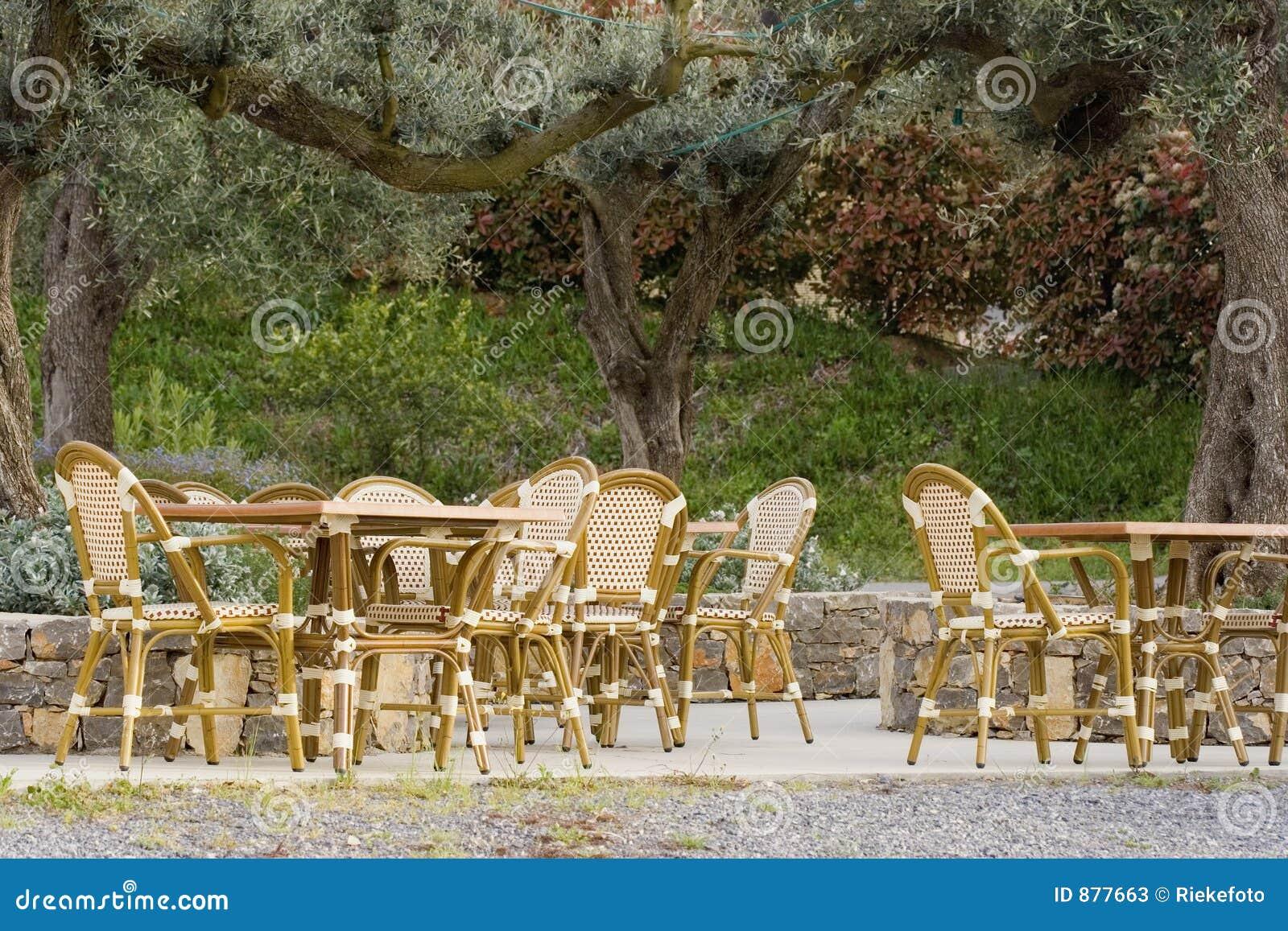 Cafe stary olive chodnik drzewo