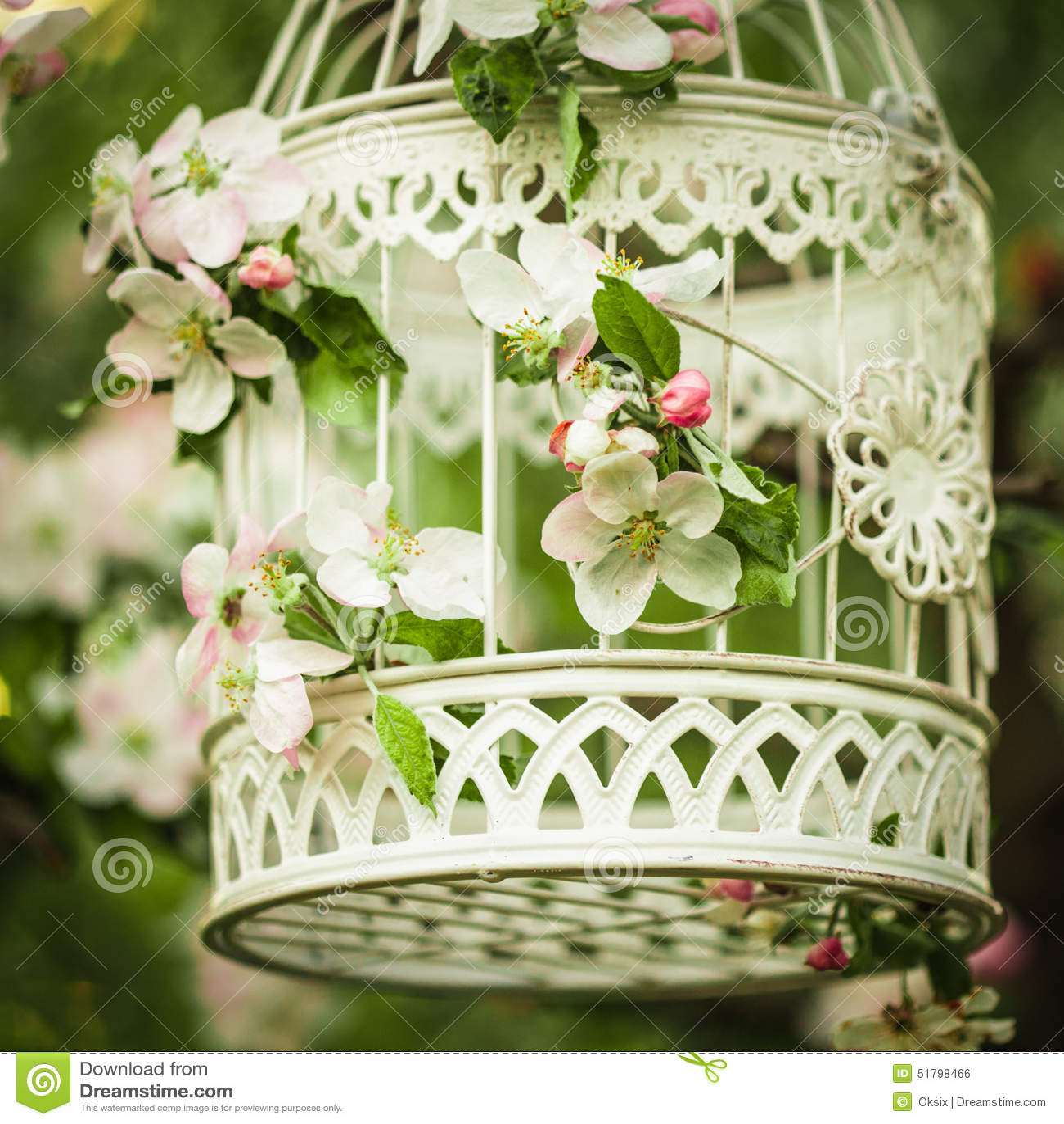 cage oiseaux d cor romantique photo stock image. Black Bedroom Furniture Sets. Home Design Ideas