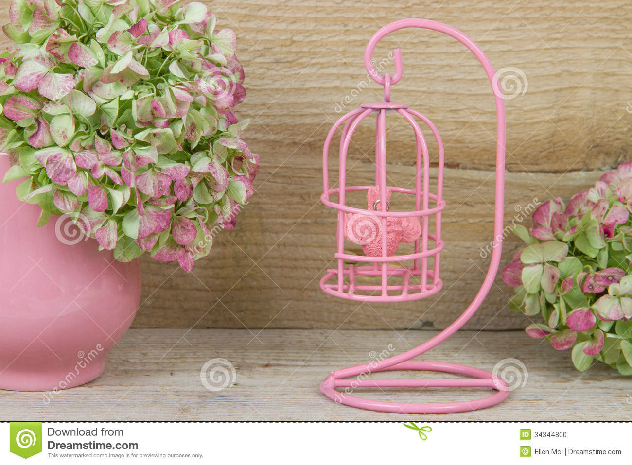 Cage oiseaux rose d corative photo stock image 34344800 for Cages a oiseaux decoratives