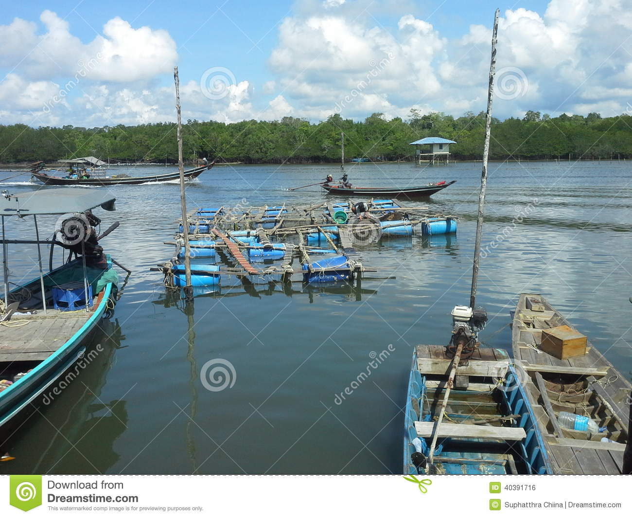 Image gallery aquaculture farming for Fish farming pros and cons