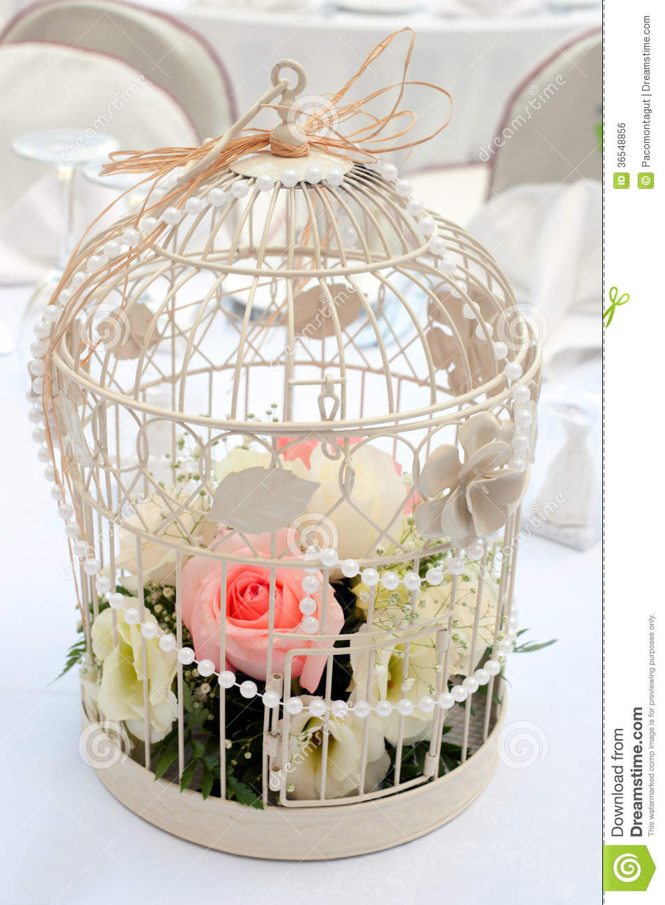 Cage With Flowers Arrangement Stock Photo - Image: 36548856