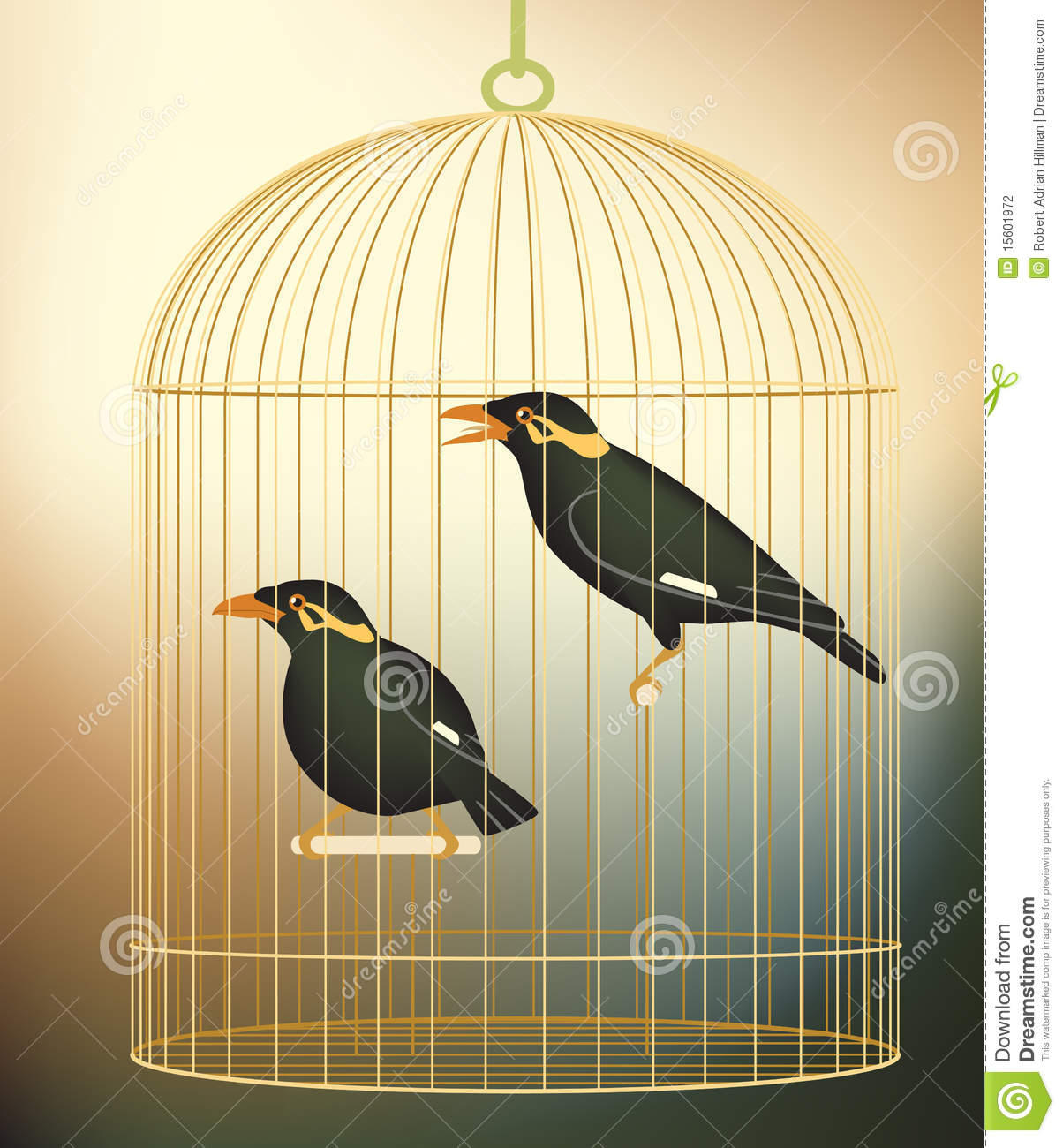 Myna Cartoons, Illustrations & Vector Stock Images - 28 ... - photo#18