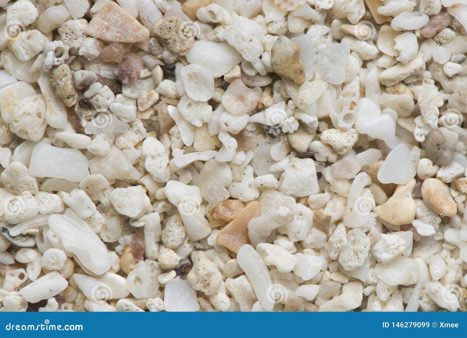 Caillou de mer Petit caillou coloré et texture en pierre Texture d?taill?e de sable