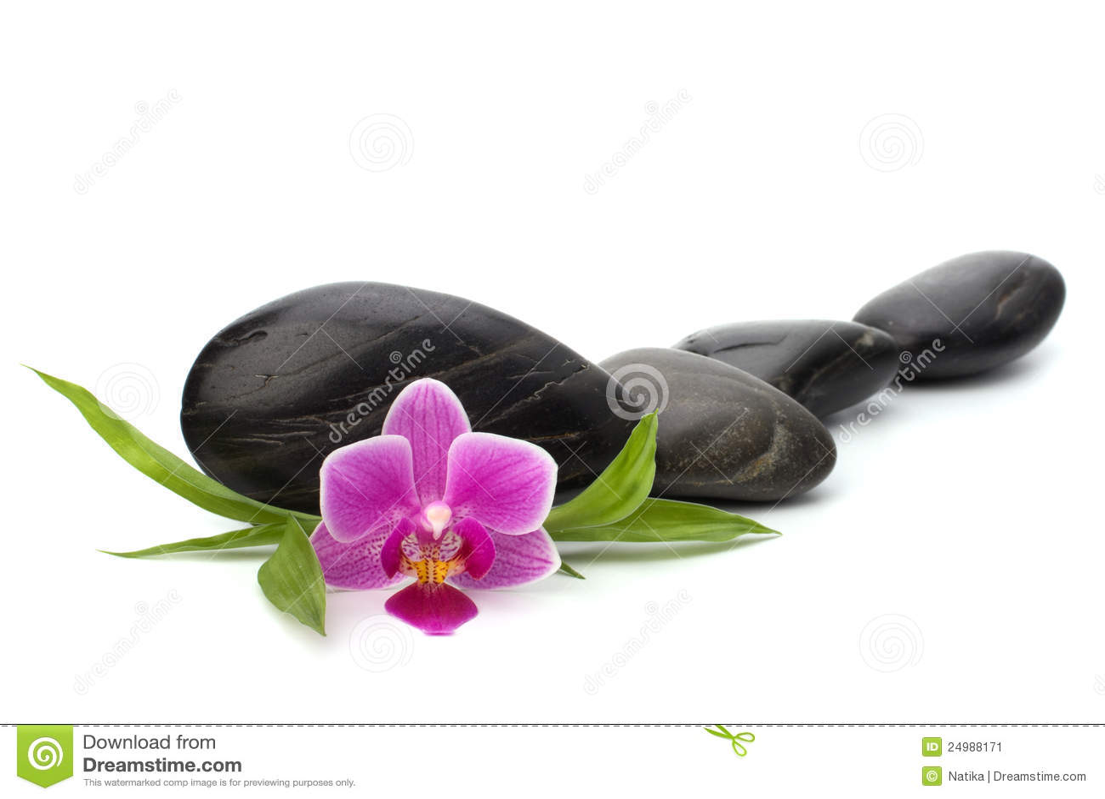 cailloux de zen image stock image 24988171. Black Bedroom Furniture Sets. Home Design Ideas
