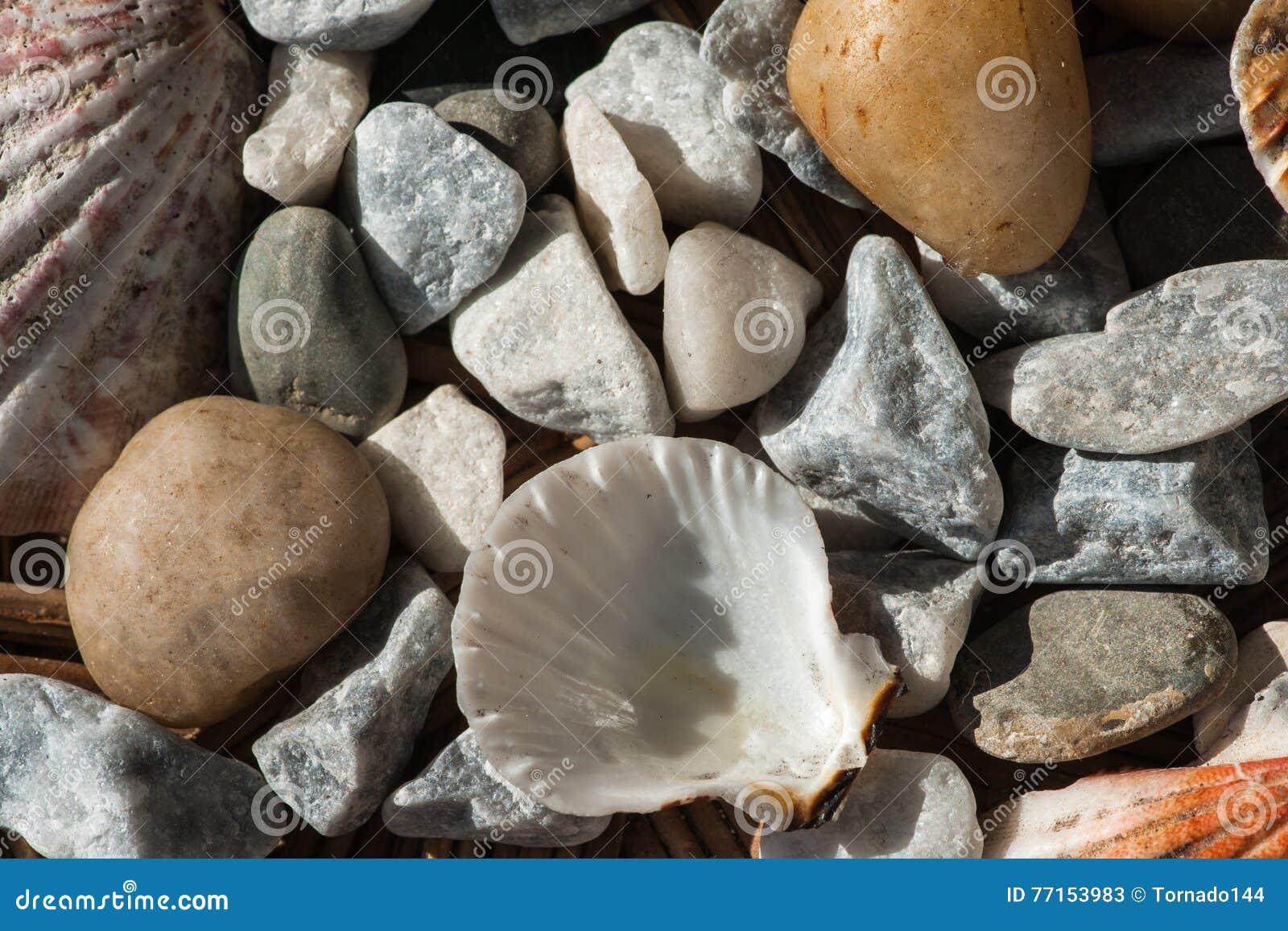 Cailloux et coquilles de mer dans un panier en osier