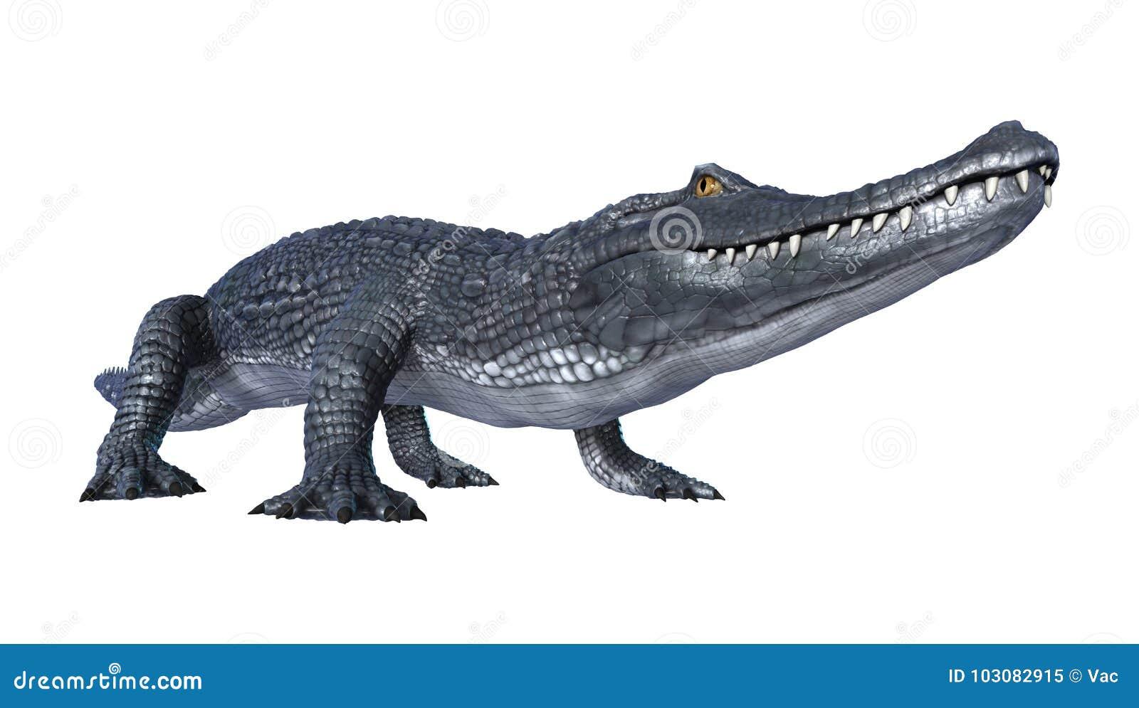 Caimán del cocodrilo de la representación 3D en blanco