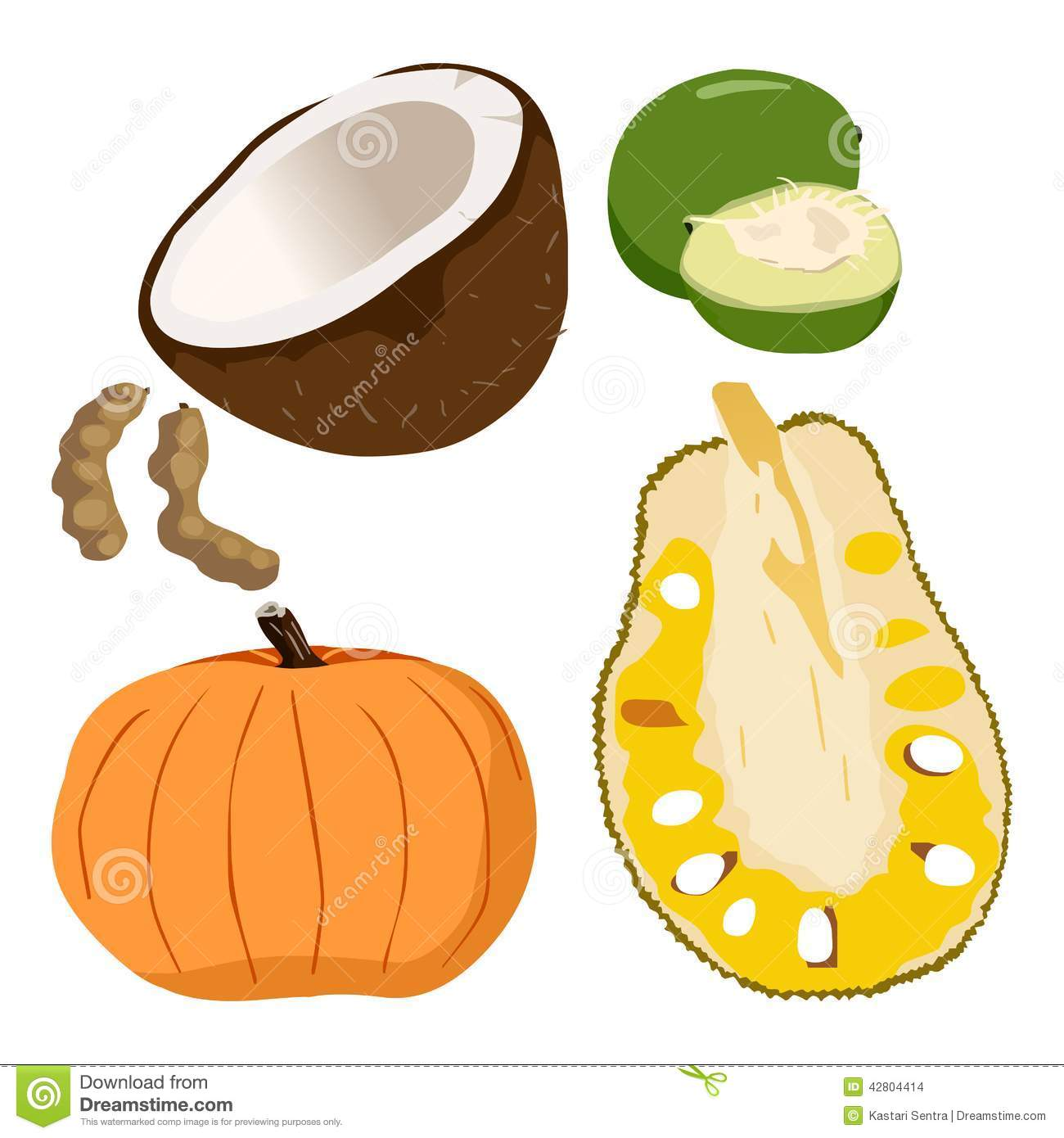 Caimito, Coconut, Pumpkin, Tamarindus indica, Jackfruit - Illustration