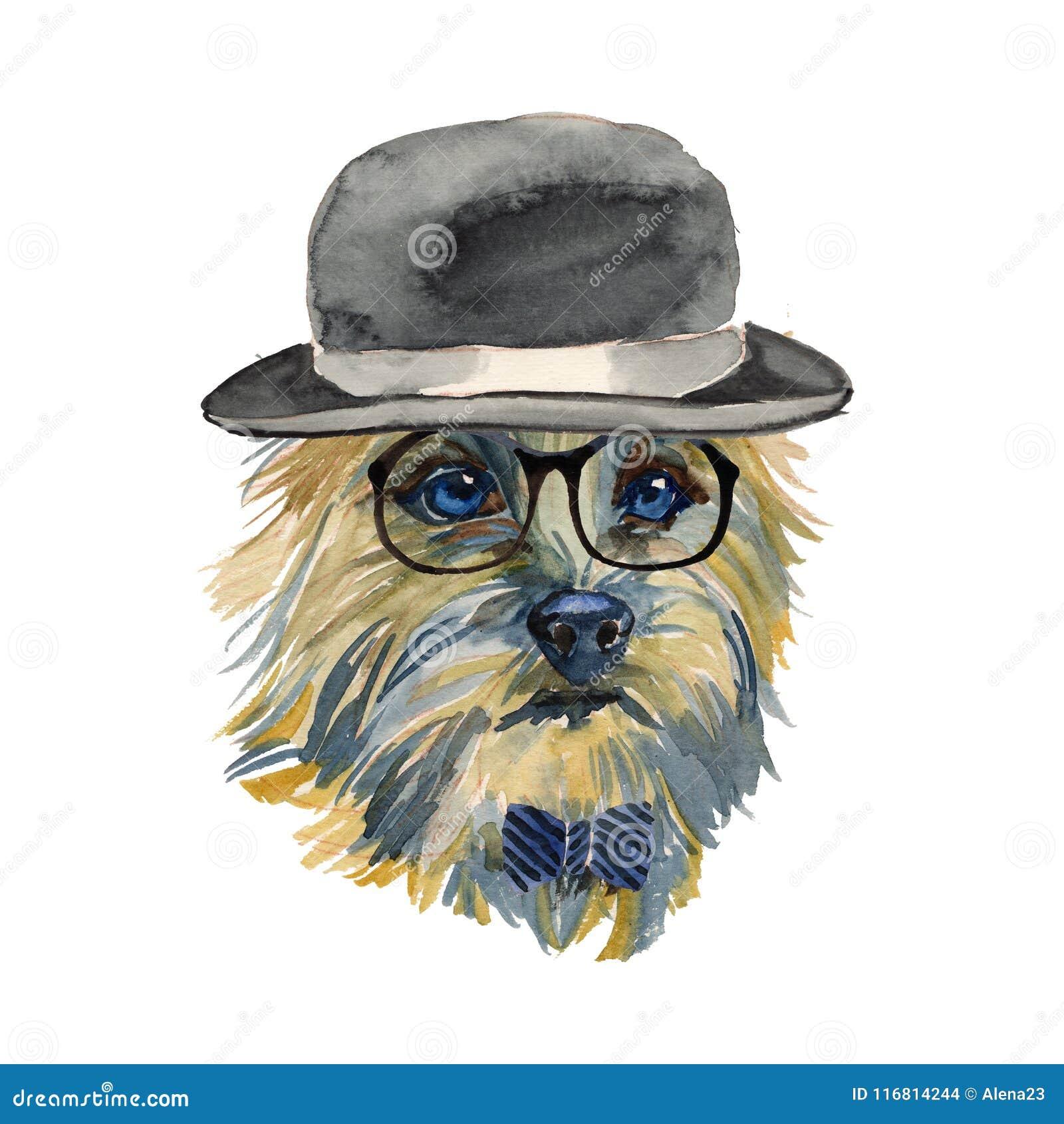 Cairn Terrier - portra isolato realistico del cane dei pantaloni a vita bassa dell acquerello