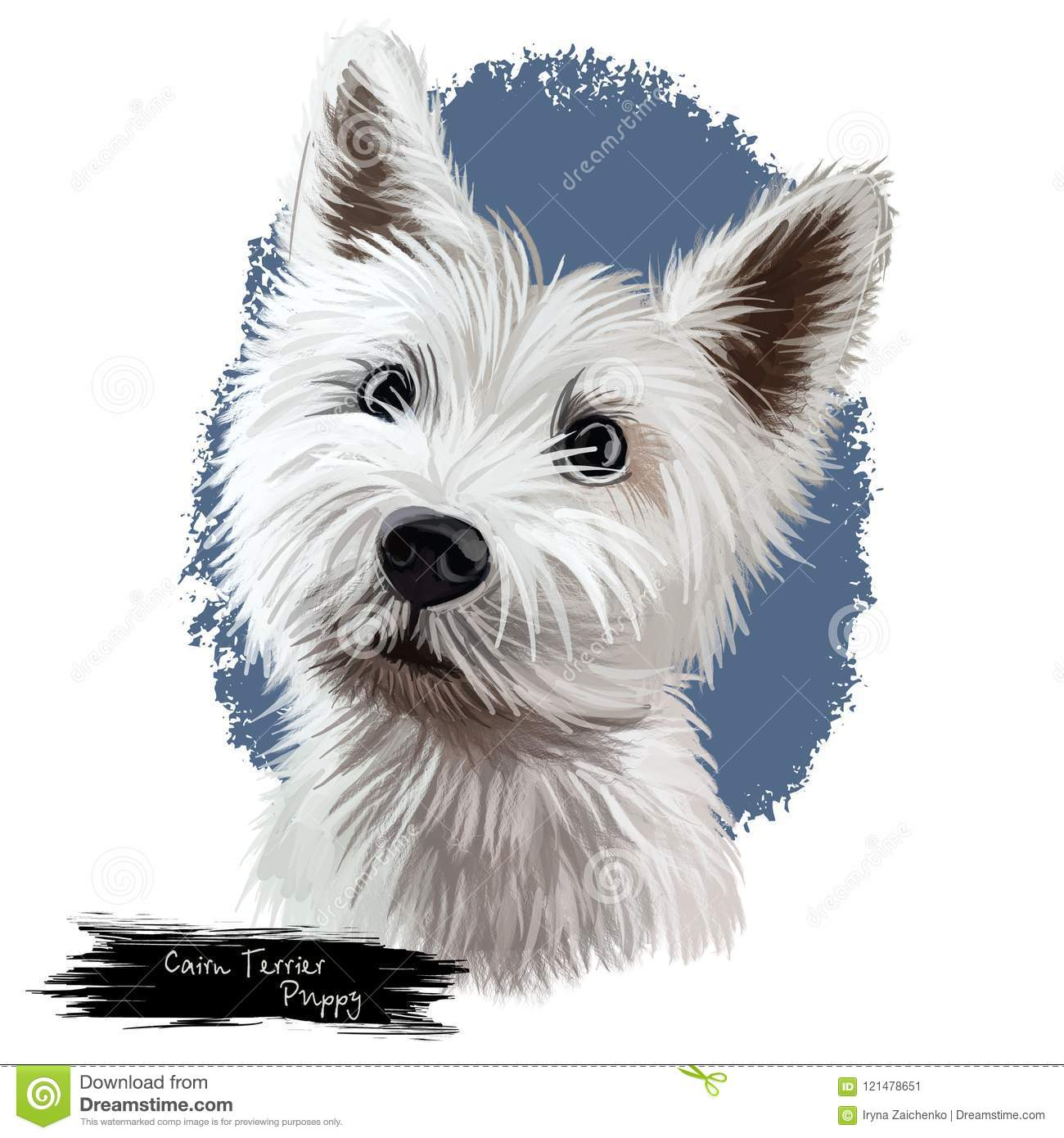 Cairn Terrier Puppy Portrait Digital Art Illustration Stock ...