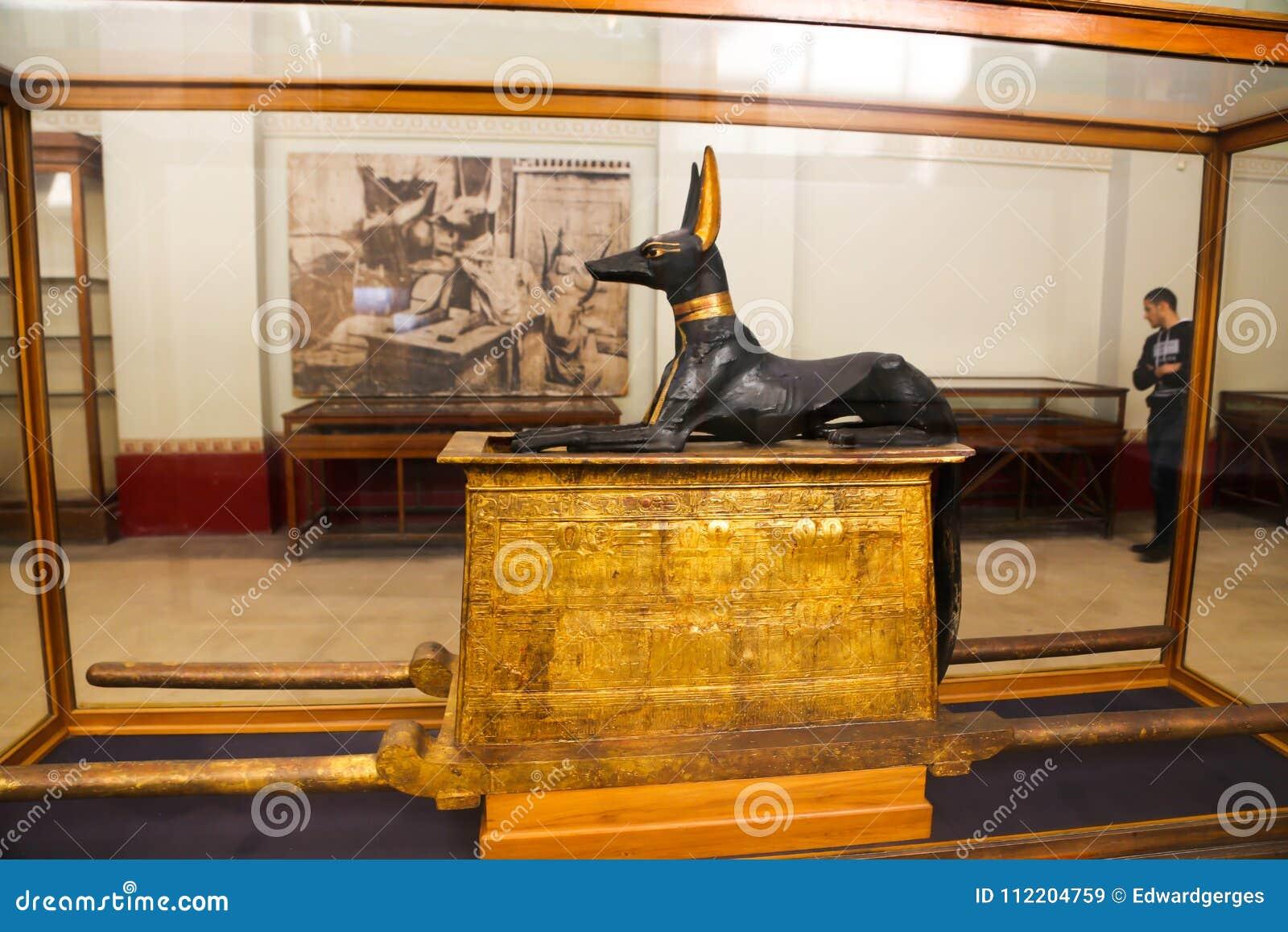 Statue of god Anubis of Taut Ankh Amon treasure - Egyptian museum