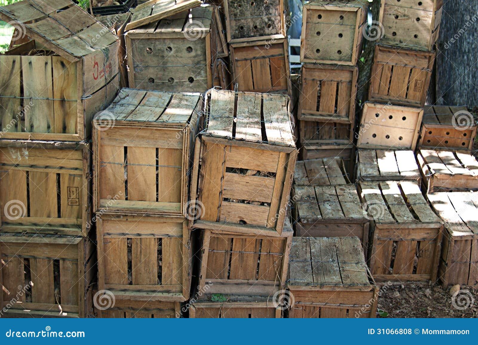 caisses en bois remplies d 39 ampoules de fleur photos libres de droits image 31066808. Black Bedroom Furniture Sets. Home Design Ideas
