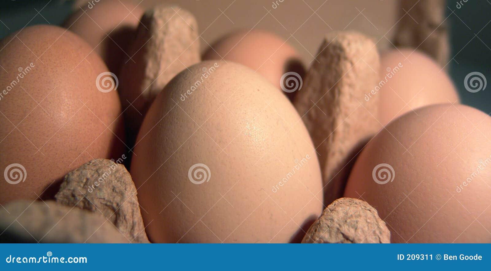 Caixa do ovo