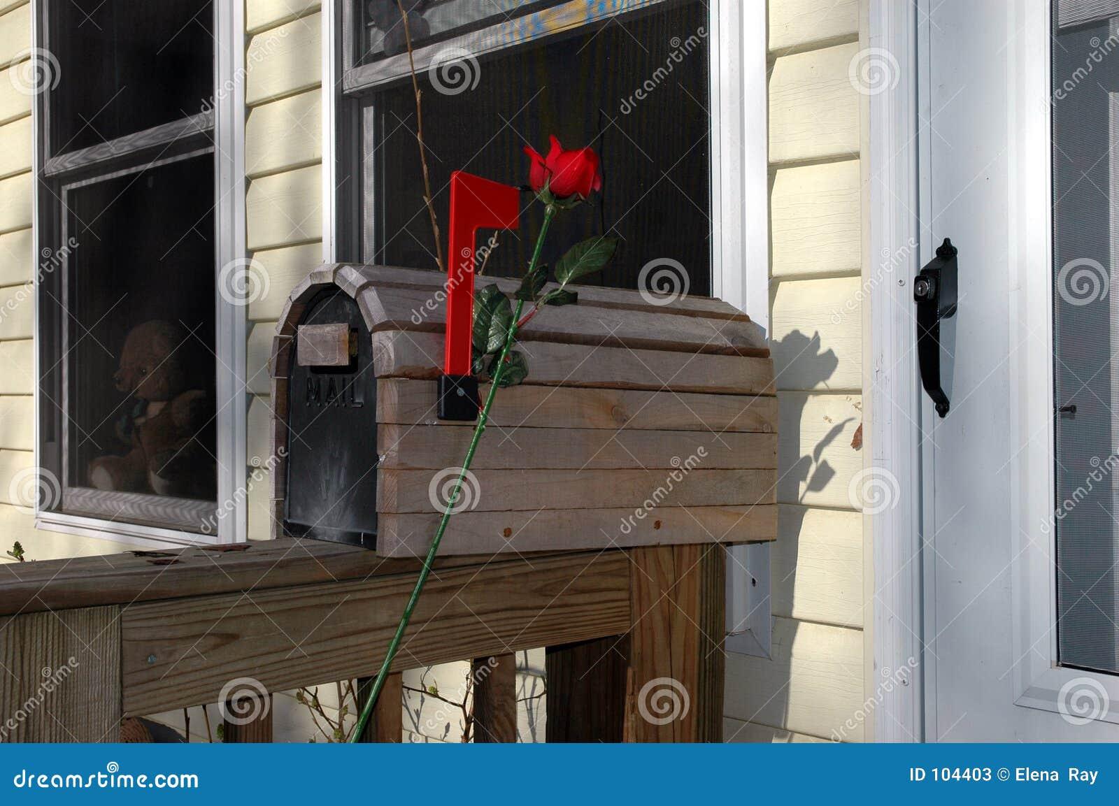 Caixa postal romântica com Rosa