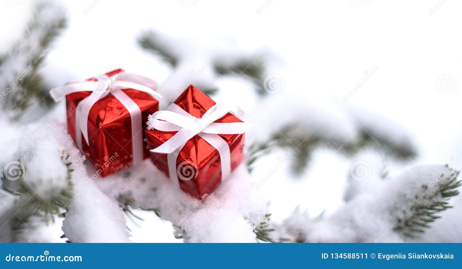 Caixas de presente do Natal e árvore de abeto da neve
