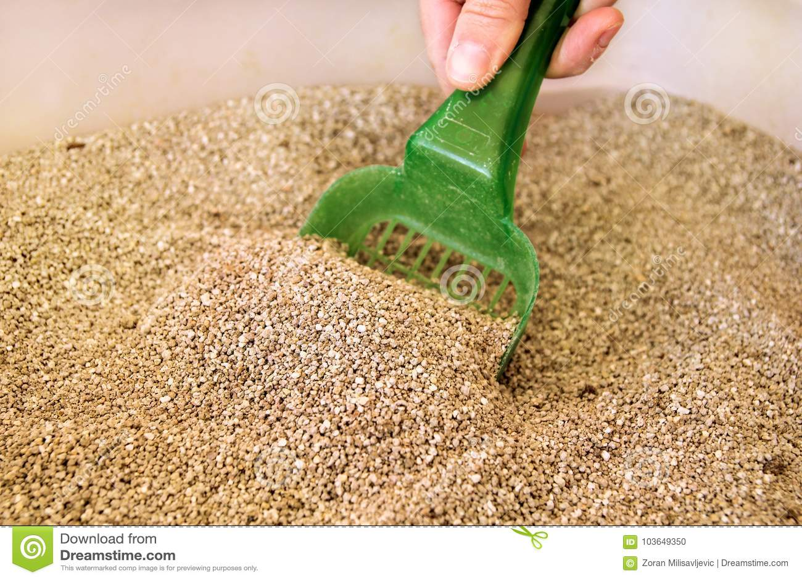 Caja de arena para gatos de la limpieza
