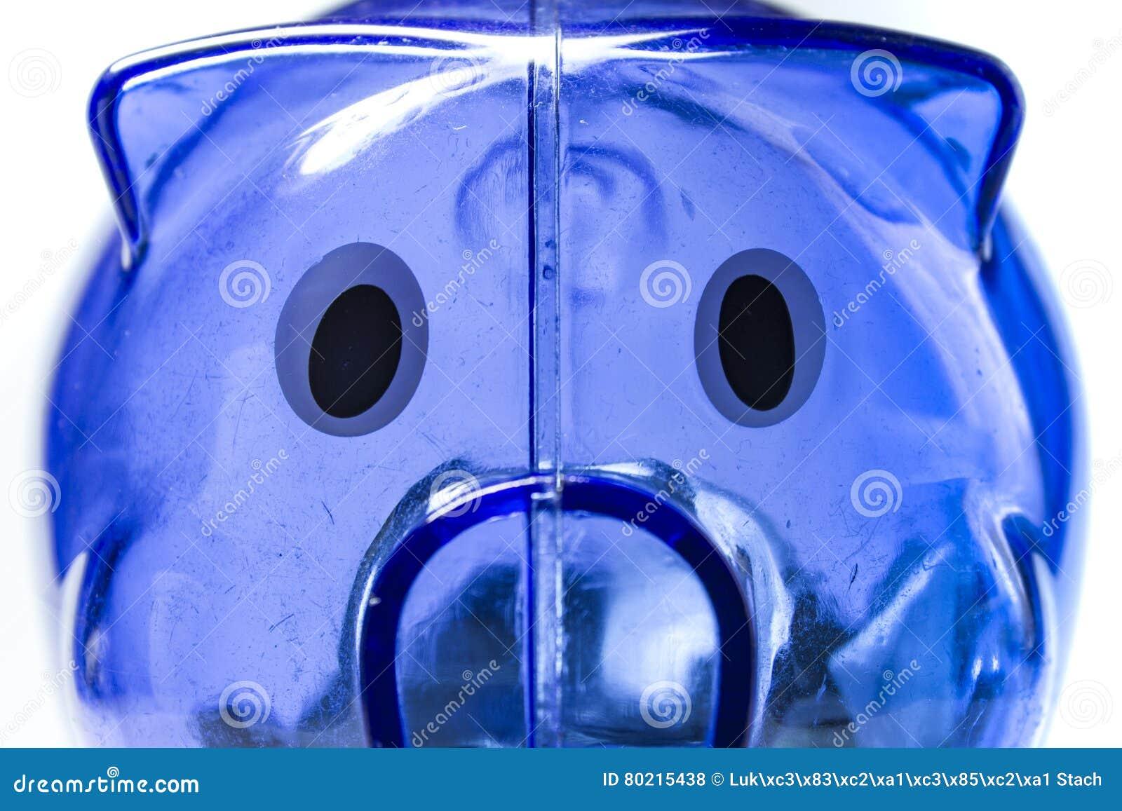 Caja de dinero azul del cerdo