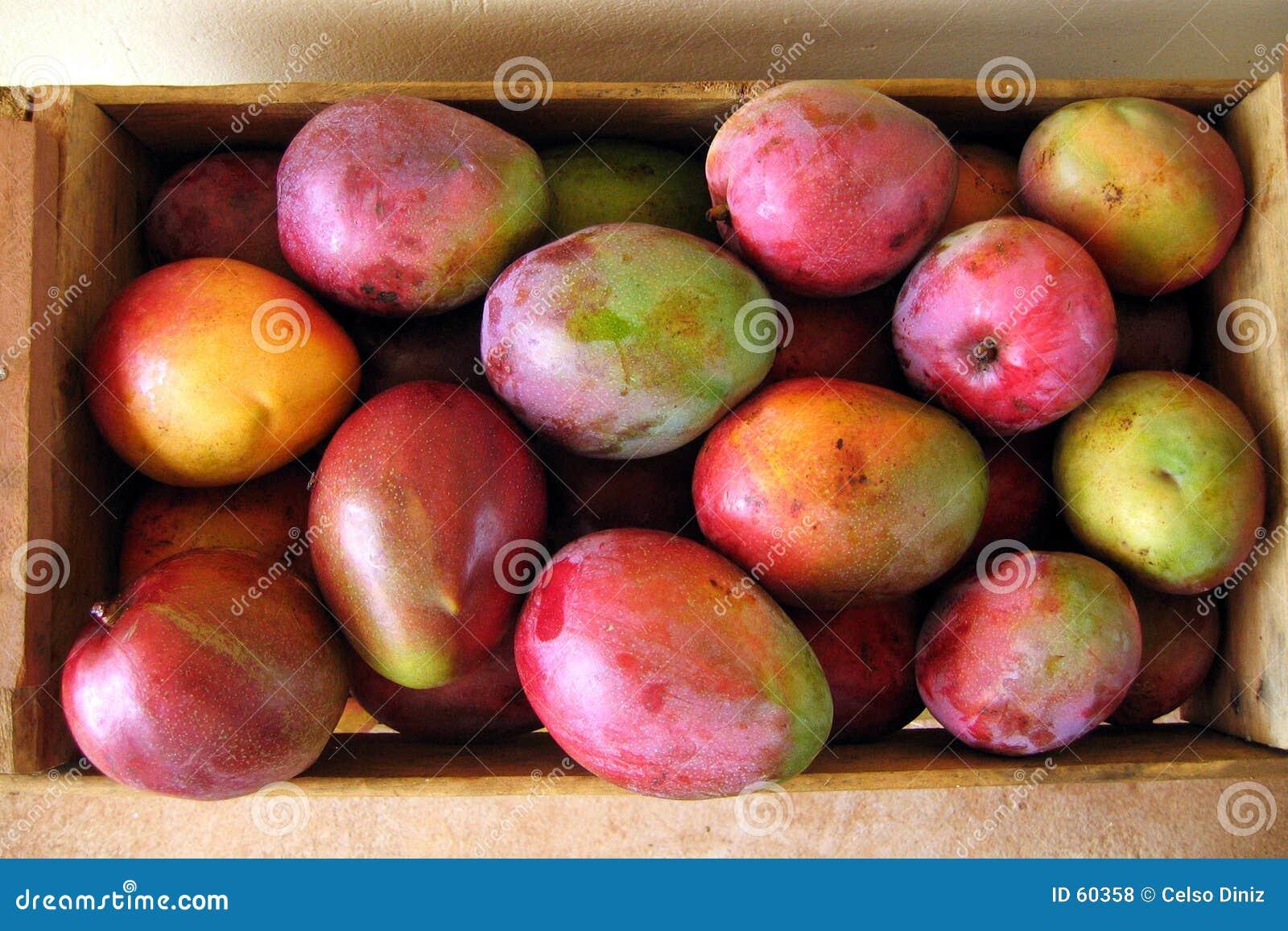 Caja de frutas del mango