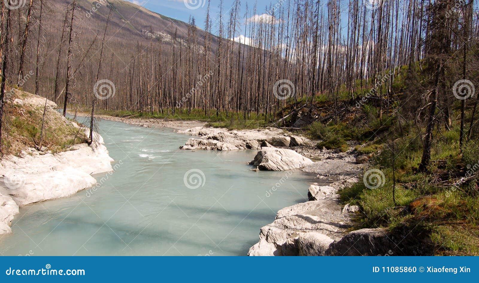 Cala de la masa de hielo flotante