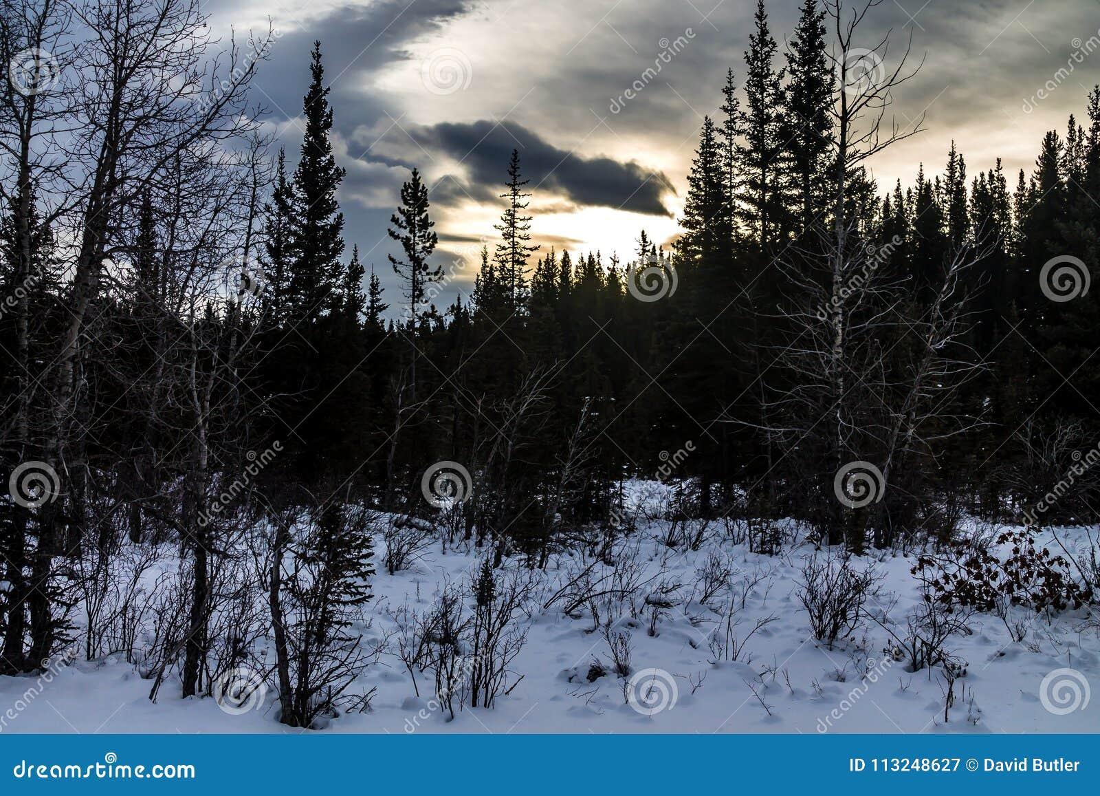 Cala de Waiprous en el invierno, zona de recreo provincial de Waiprous, Alberta, Canadá