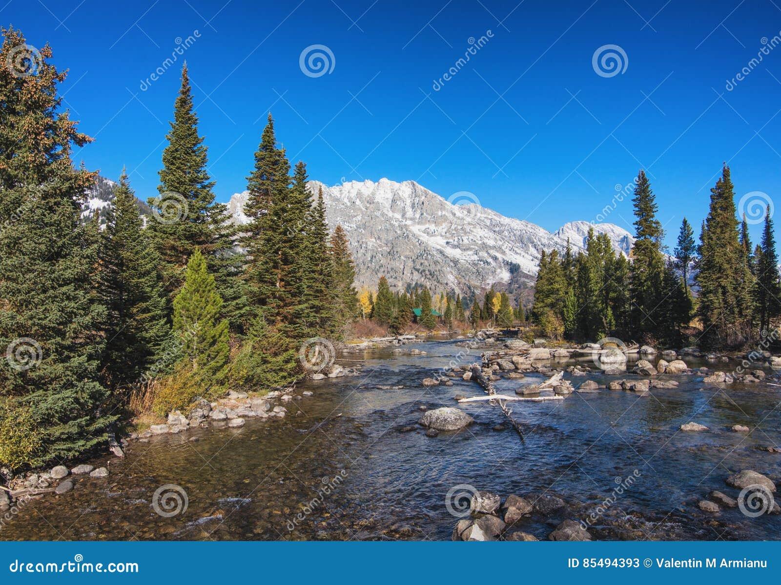 Cala del Cottonwood en el parque nacional magnífico de Teton, Wyoming