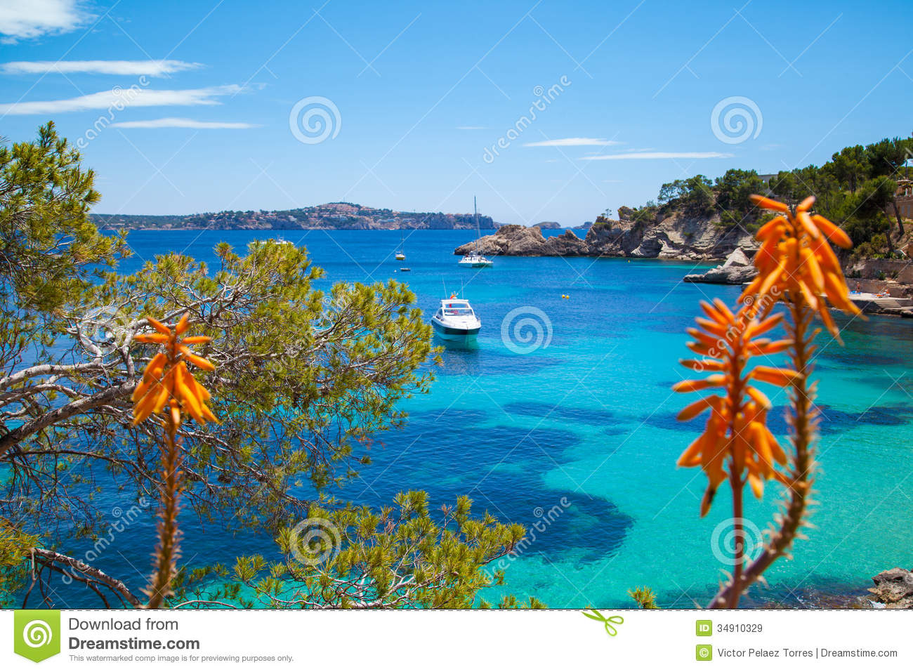Paguera Spain  city pictures gallery : cala fornells view majorca paguera spain 34910329
