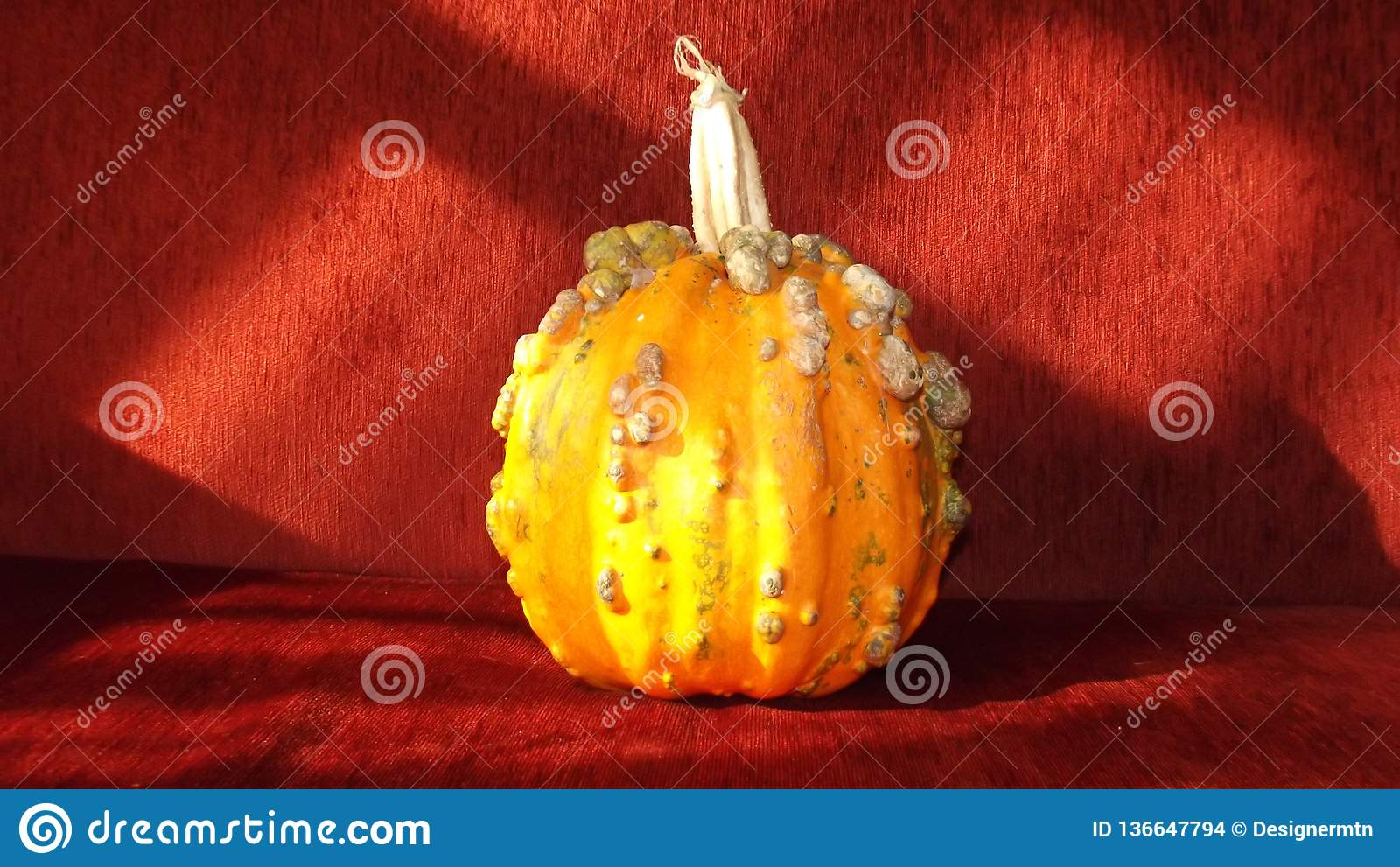 Calabaza anaranjada de Halloween y fondo rojo