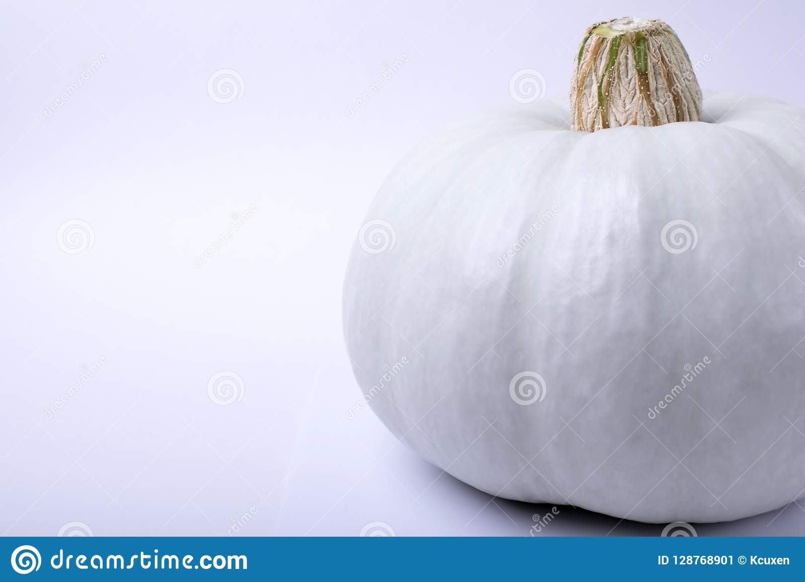 Calabaza blanca del albino